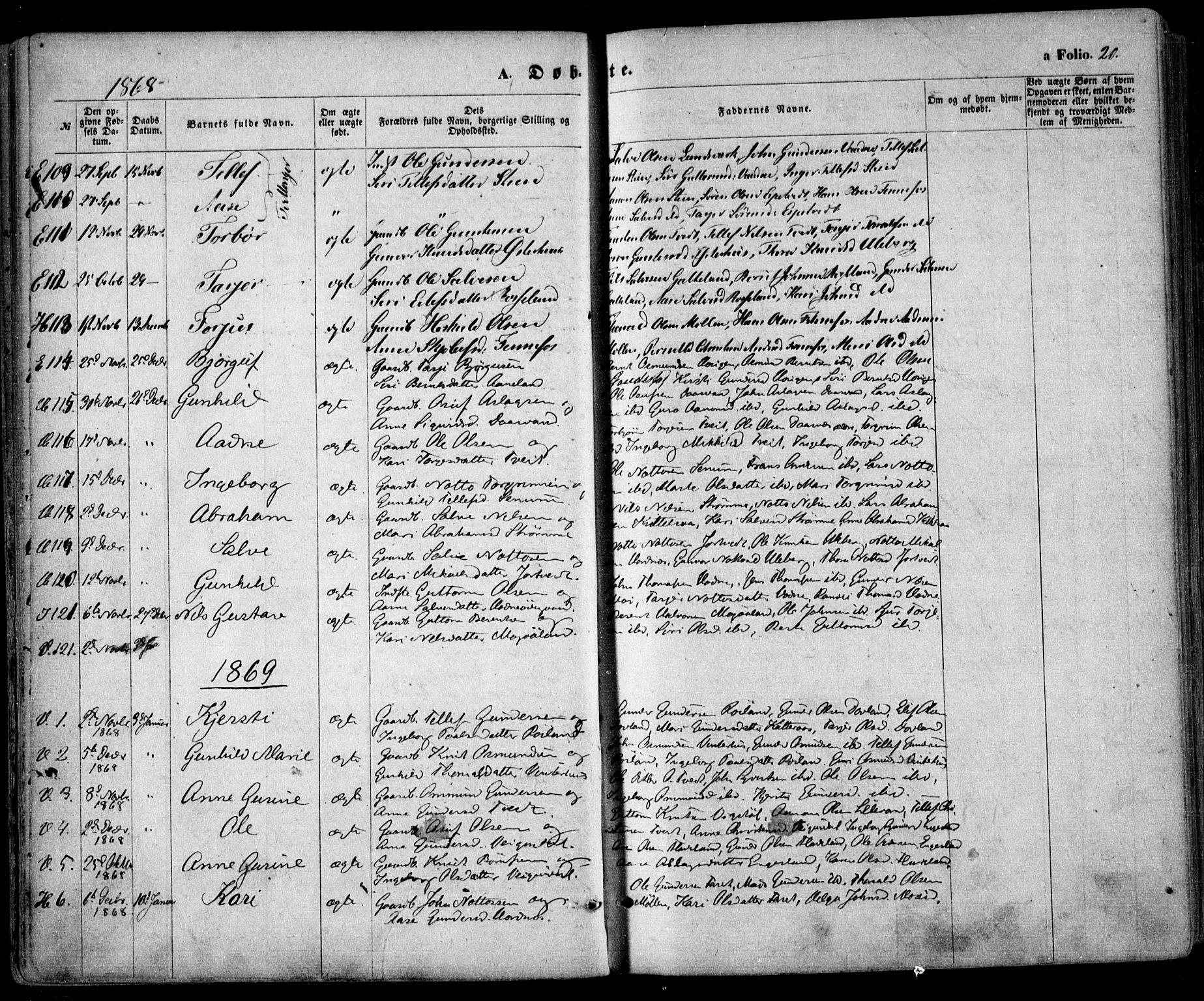 SAK, Evje sokneprestkontor, F/Fa/Faa/L0006: Ministerialbok nr. A 6, 1866-1884, s. 20