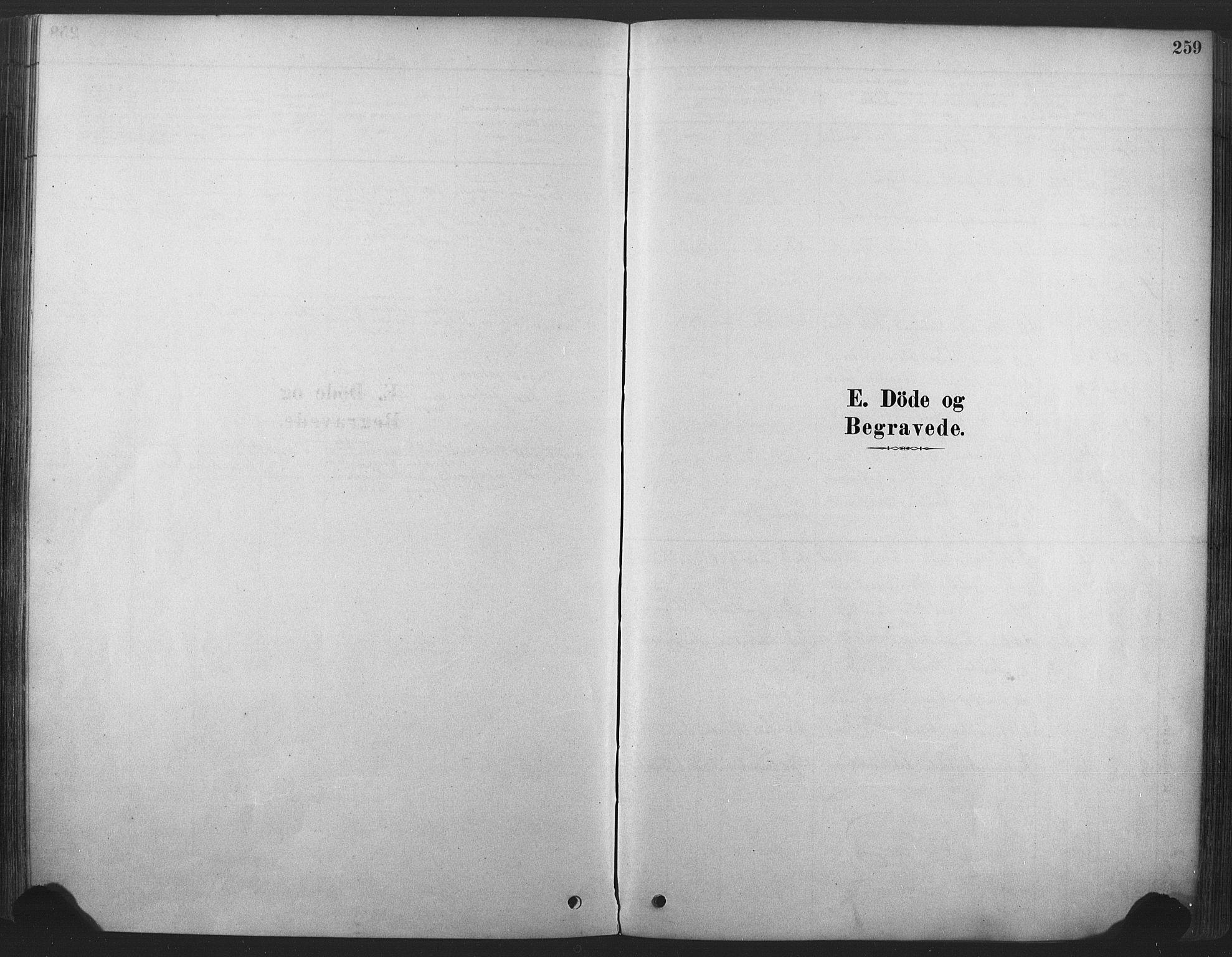 SAKO, Våle kirkebøker, F/Fa/L0011: Ministerialbok nr. I 11, 1878-1906, s. 259