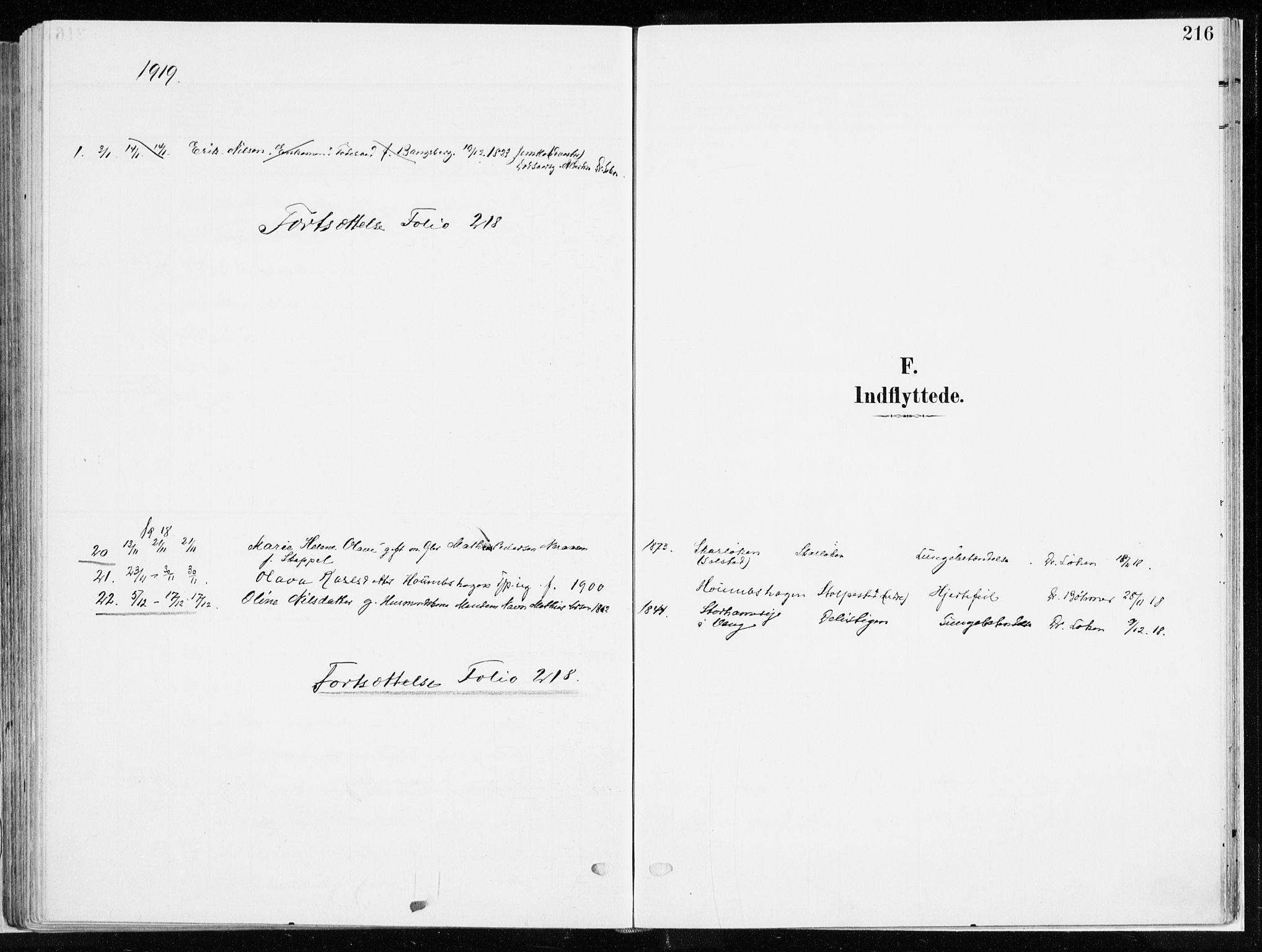 SAH, Ringsaker prestekontor, K/Ka/L0019: Ministerialbok nr. 19, 1905-1920, s. 216