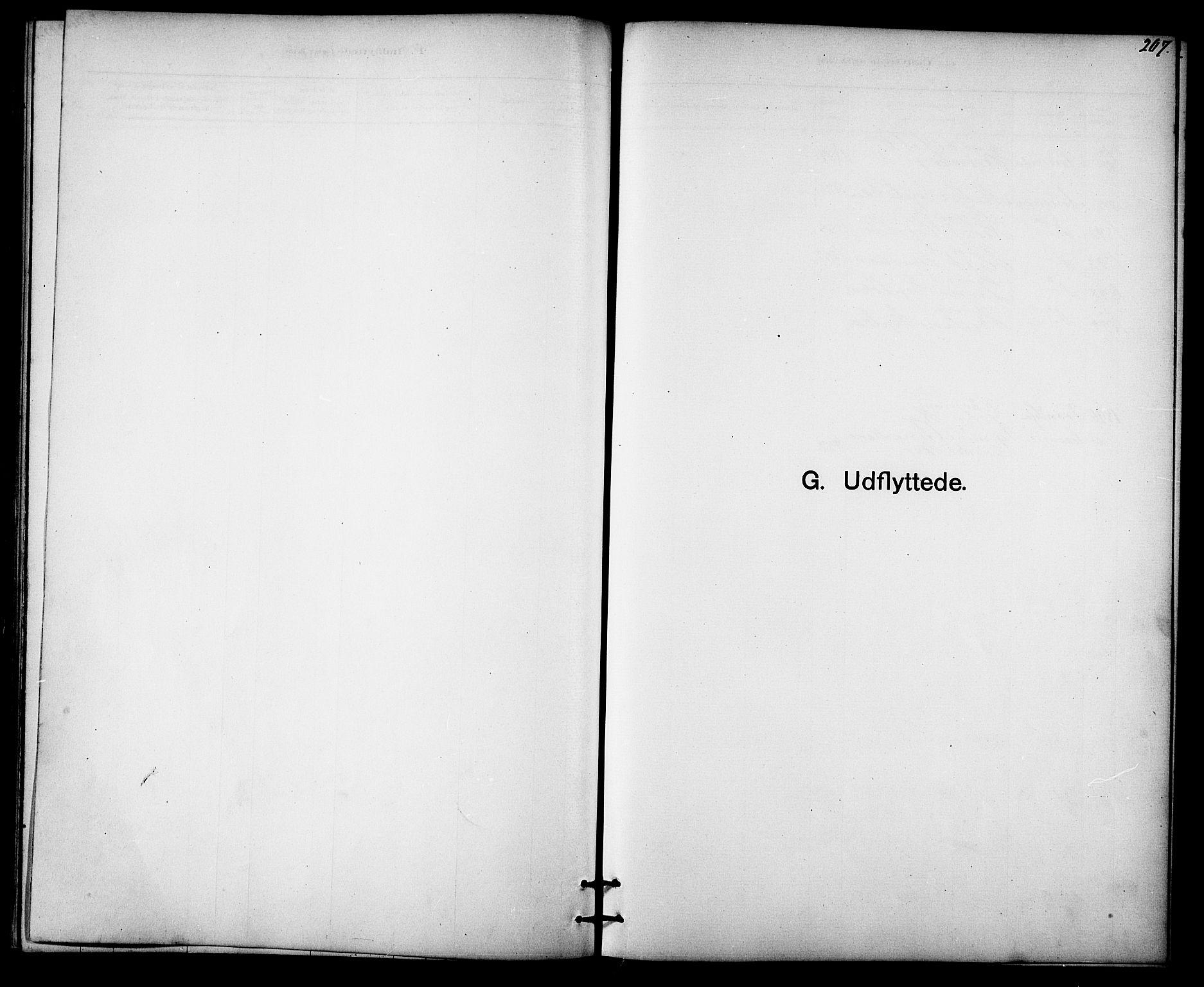 SAT, Ministerialprotokoller, klokkerbøker og fødselsregistre - Sør-Trøndelag, 613/L0395: Klokkerbok nr. 613C03, 1887-1909, s. 207