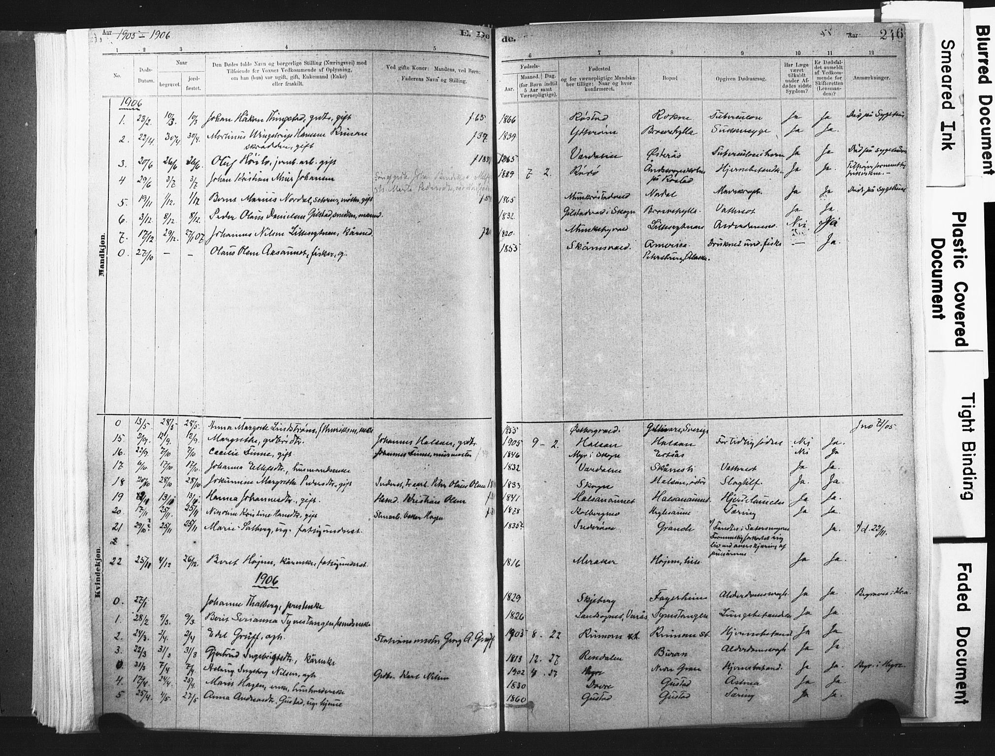 SAT, Ministerialprotokoller, klokkerbøker og fødselsregistre - Nord-Trøndelag, 721/L0207: Ministerialbok nr. 721A02, 1880-1911, s. 246
