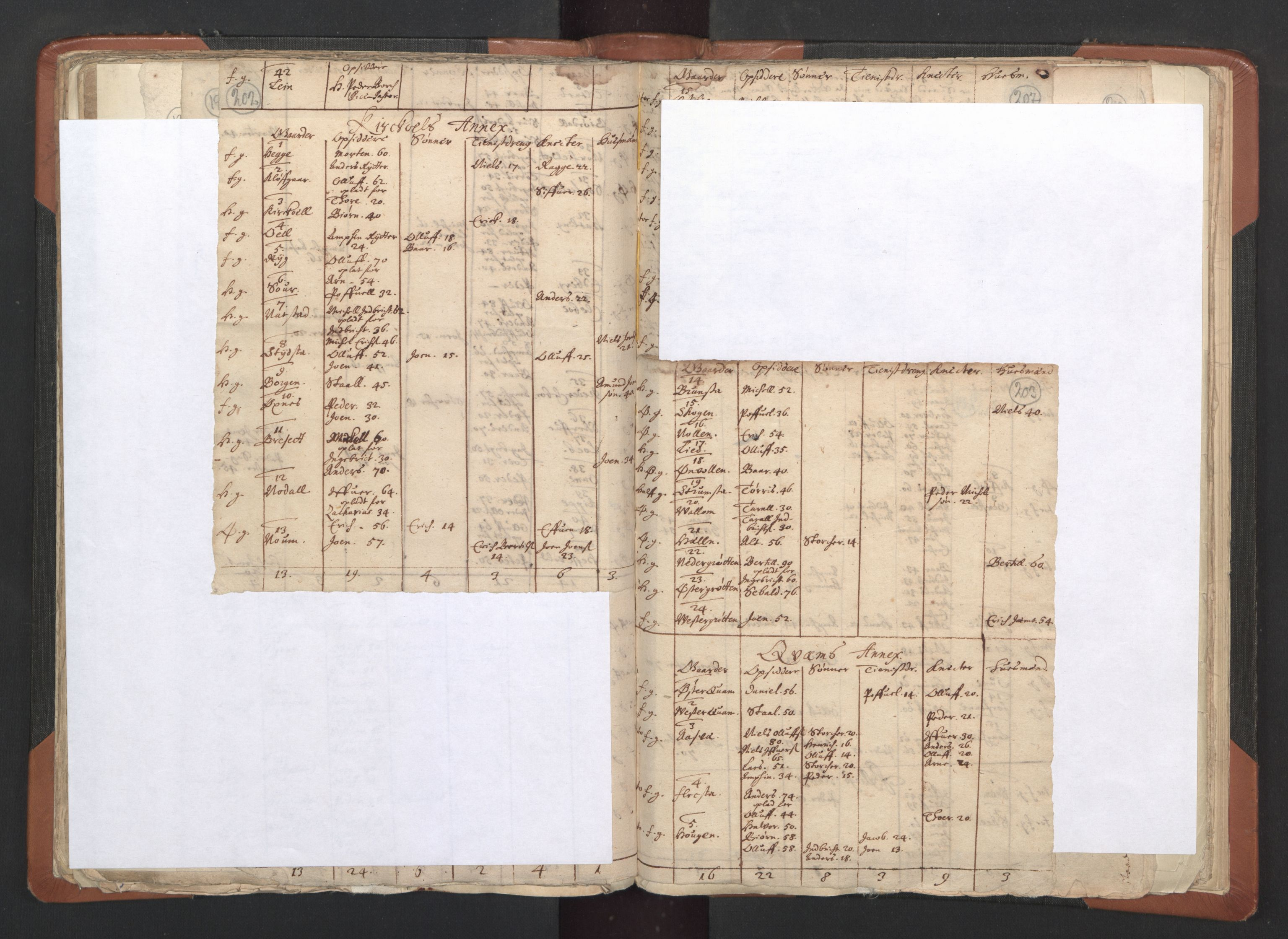 RA, Sogneprestenes manntall 1664-1666, nr. 33: Innherad prosti, 1664-1666, s. 202-203
