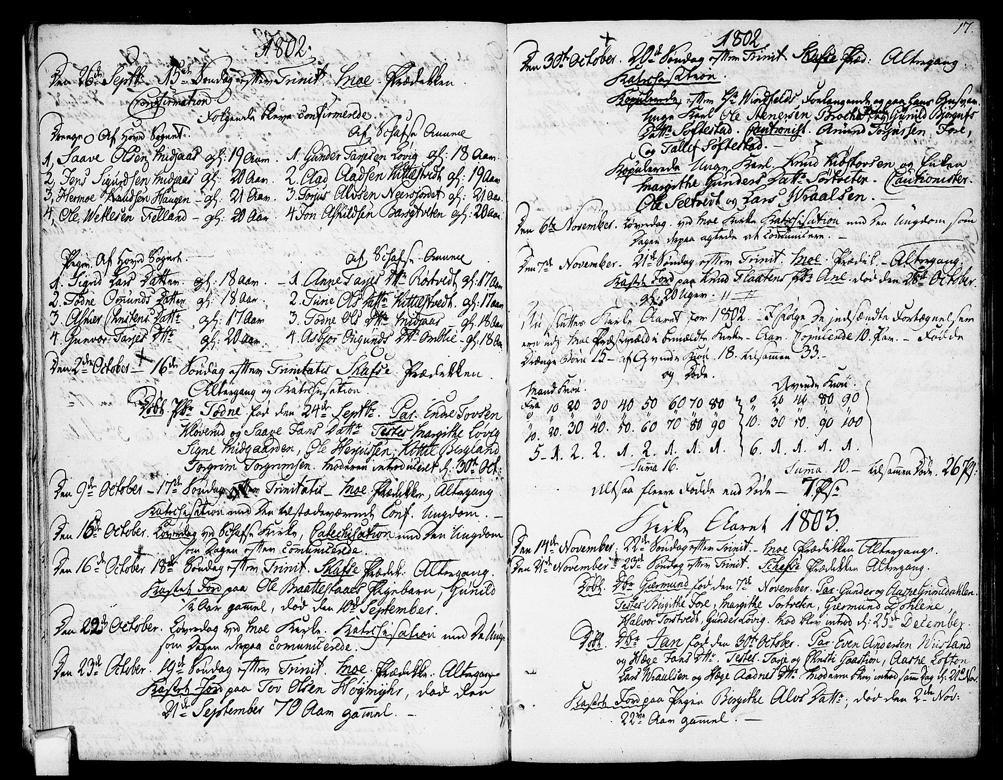 SAKO, Mo kirkebøker, F/Fa/L0003: Ministerialbok nr. I 3, 1800-1814, s. 17