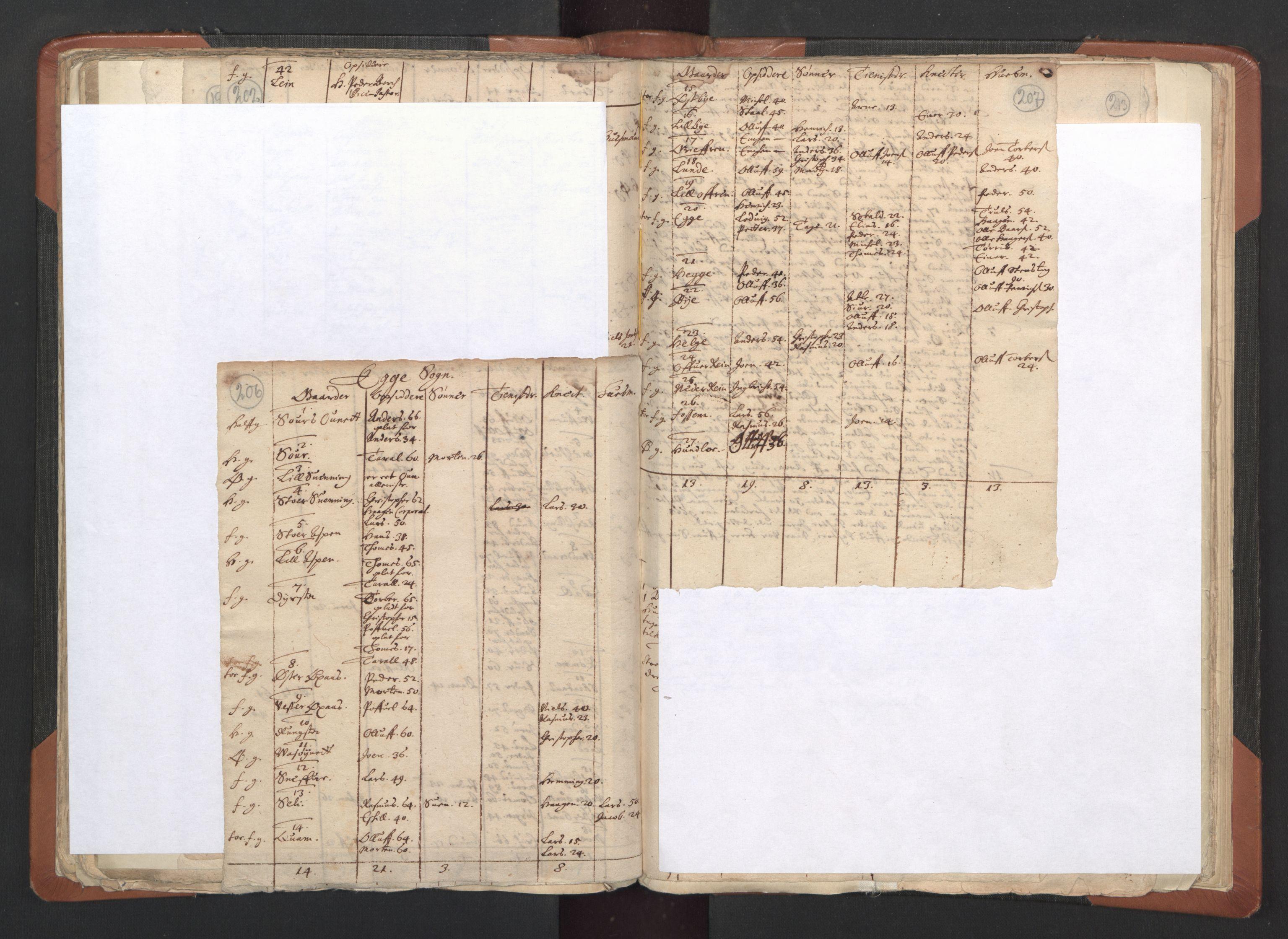 RA, Sogneprestenes manntall 1664-1666, nr. 33: Innherad prosti, 1664-1666, s. 206-207