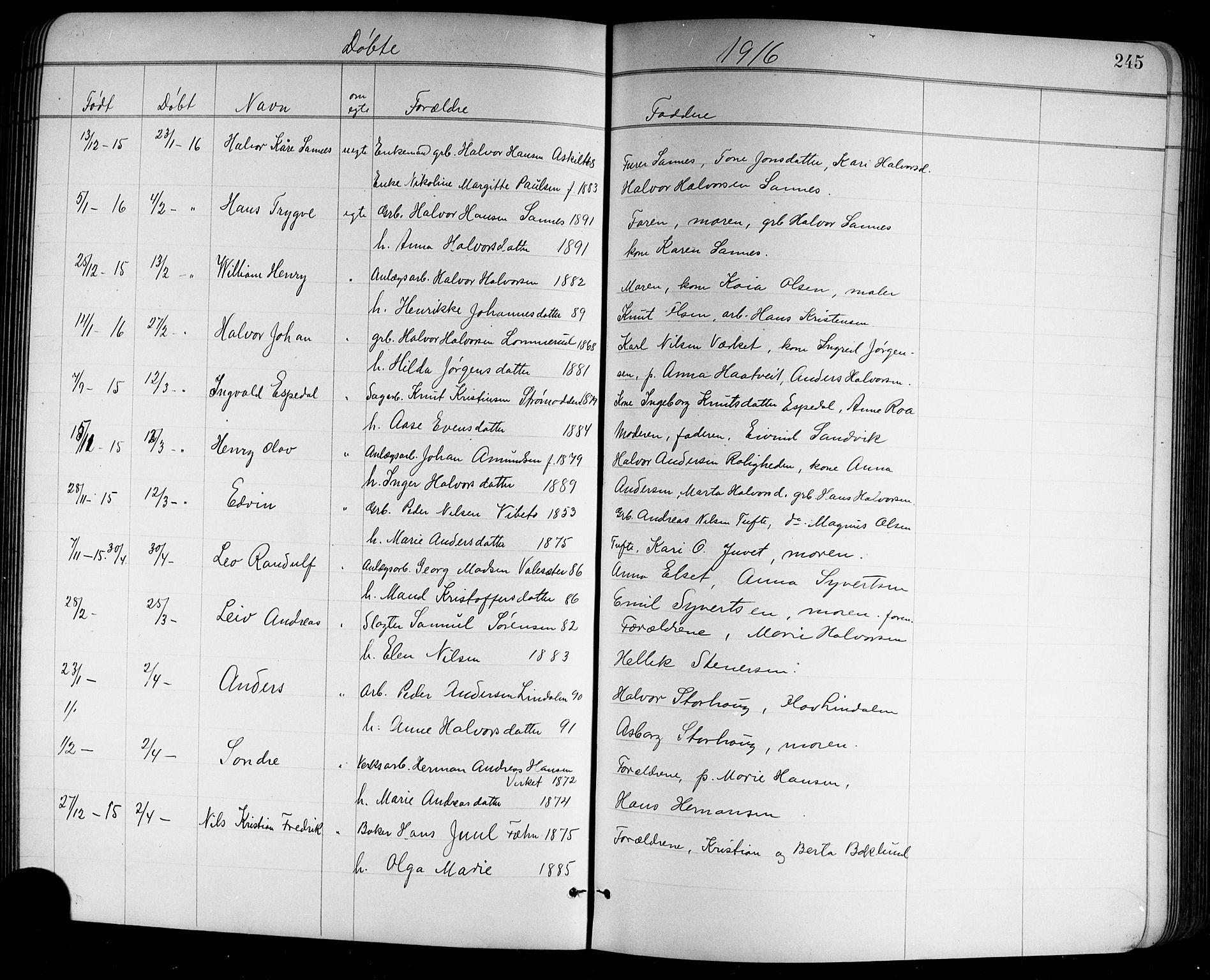 SAKO, Holla kirkebøker, G/Ga/L0005: Klokkerbok nr. I 5, 1891-1917, s. 245