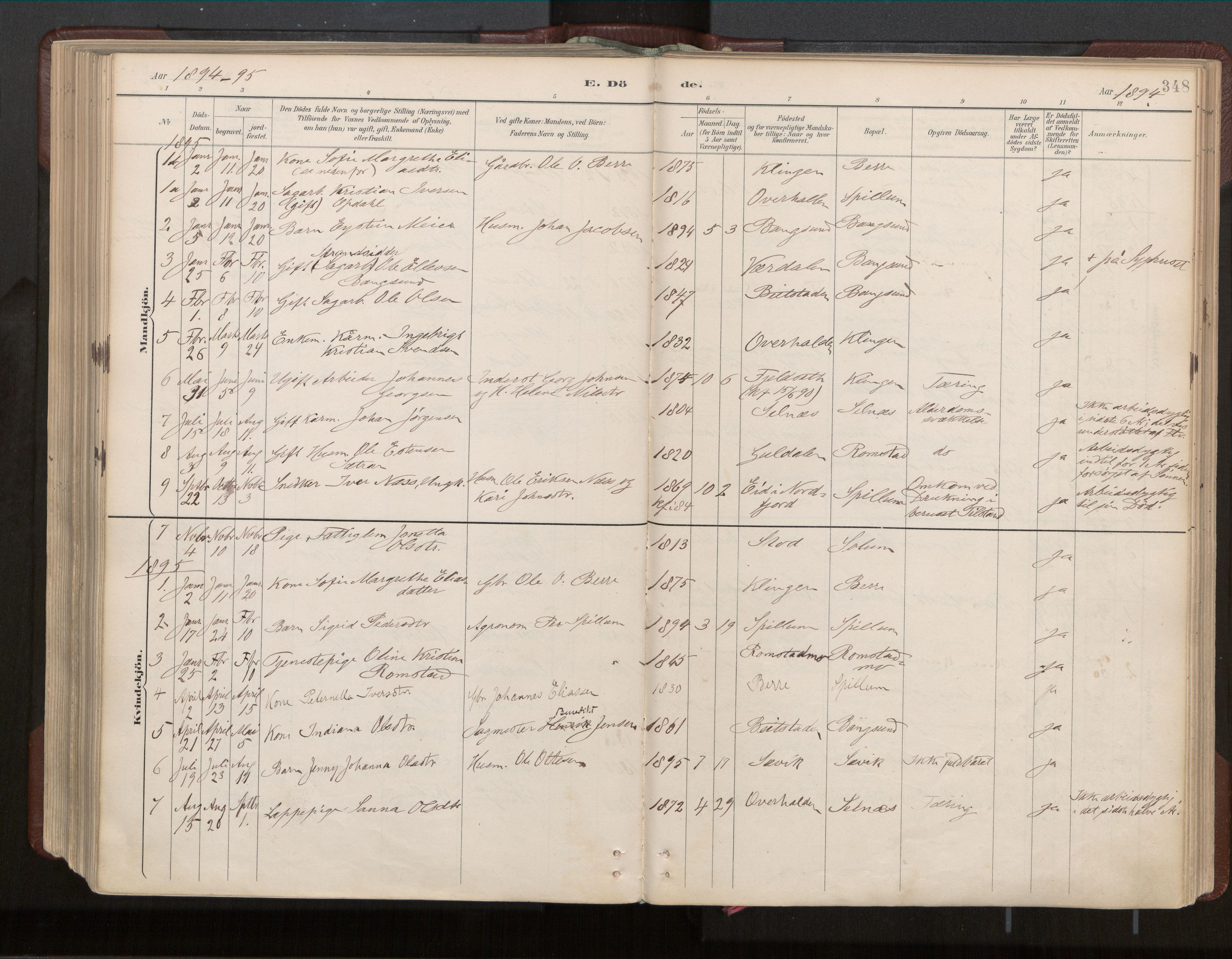 SAT, Ministerialprotokoller, klokkerbøker og fødselsregistre - Nord-Trøndelag, 770/L0589: Ministerialbok nr. 770A03, 1887-1929, s. 348