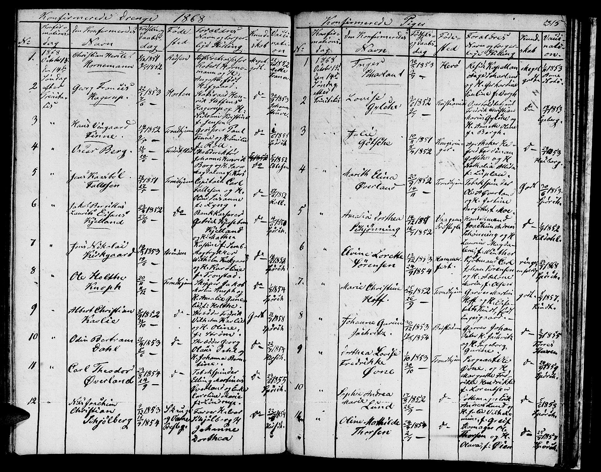 SAT, Ministerialprotokoller, klokkerbøker og fødselsregistre - Sør-Trøndelag, 601/L0070: Residerende kapellans bok nr. 601B03, 1821-1881, s. 315