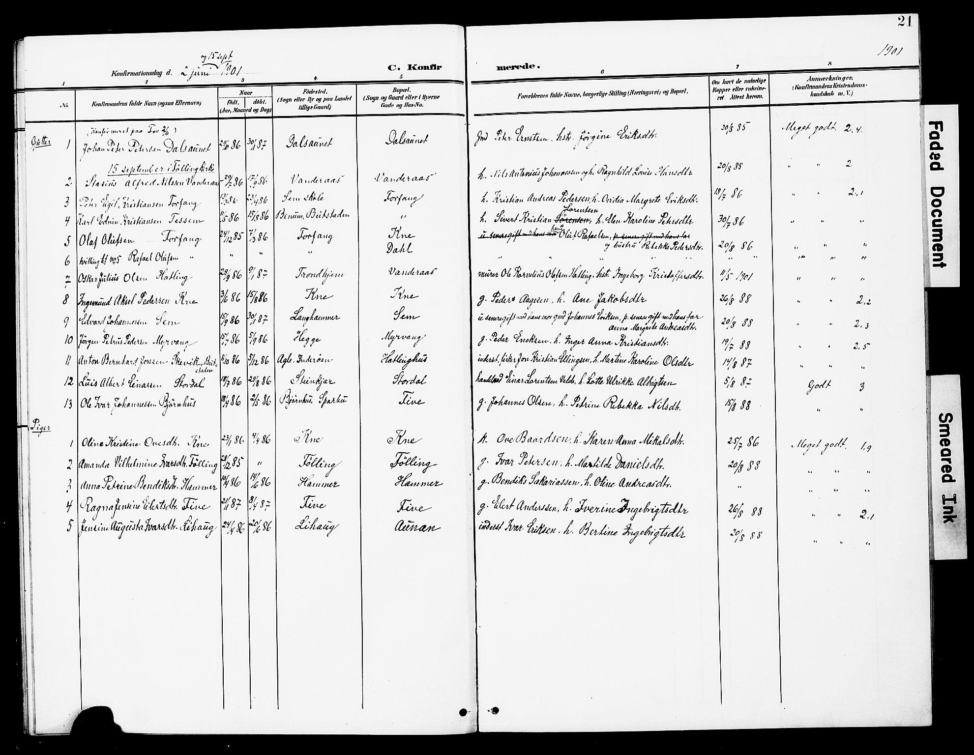 SAT, Ministerialprotokoller, klokkerbøker og fødselsregistre - Nord-Trøndelag, 748/L0464: Ministerialbok nr. 748A01, 1900-1908, s. 21