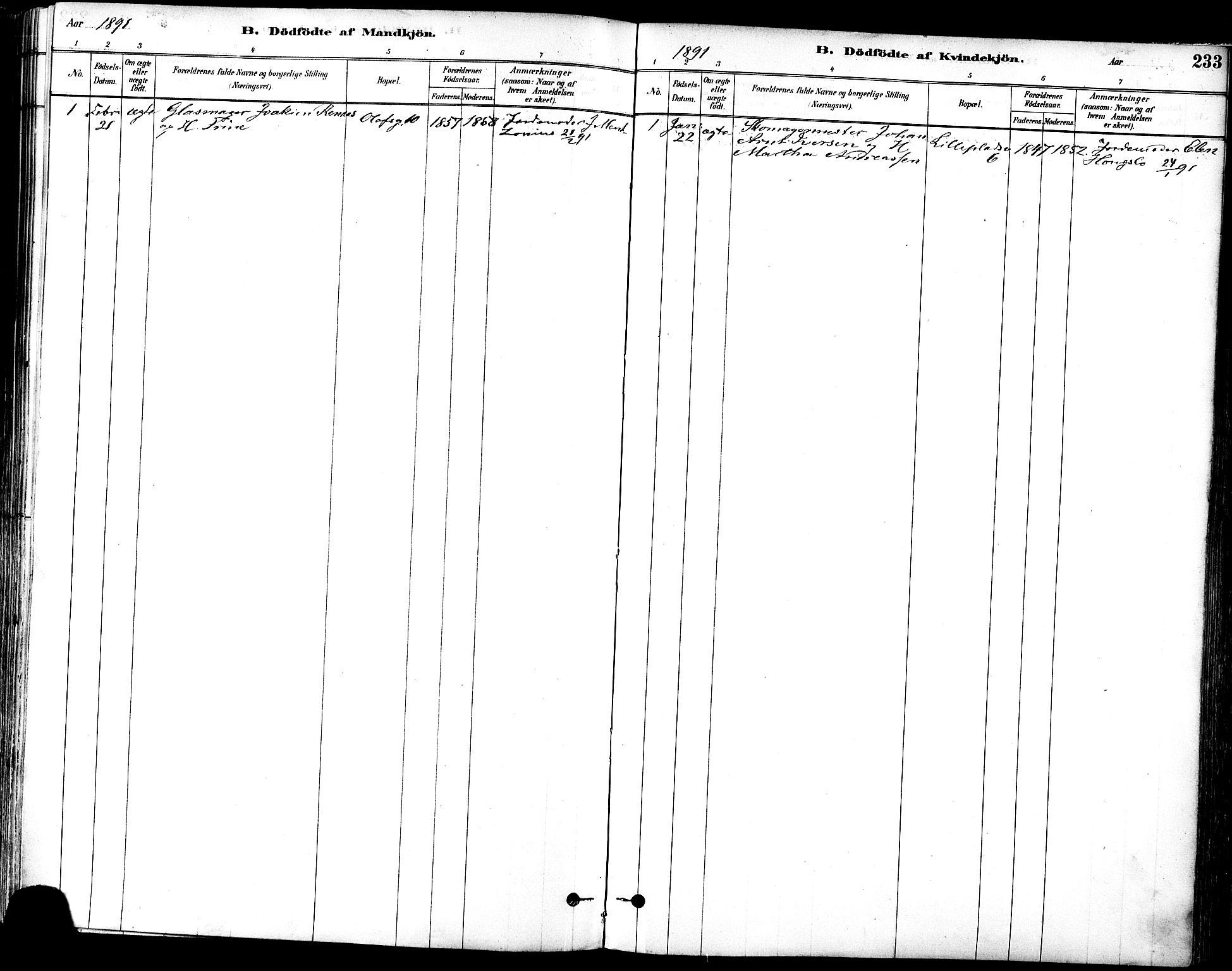 SAT, Ministerialprotokoller, klokkerbøker og fødselsregistre - Sør-Trøndelag, 601/L0057: Ministerialbok nr. 601A25, 1877-1891, s. 233