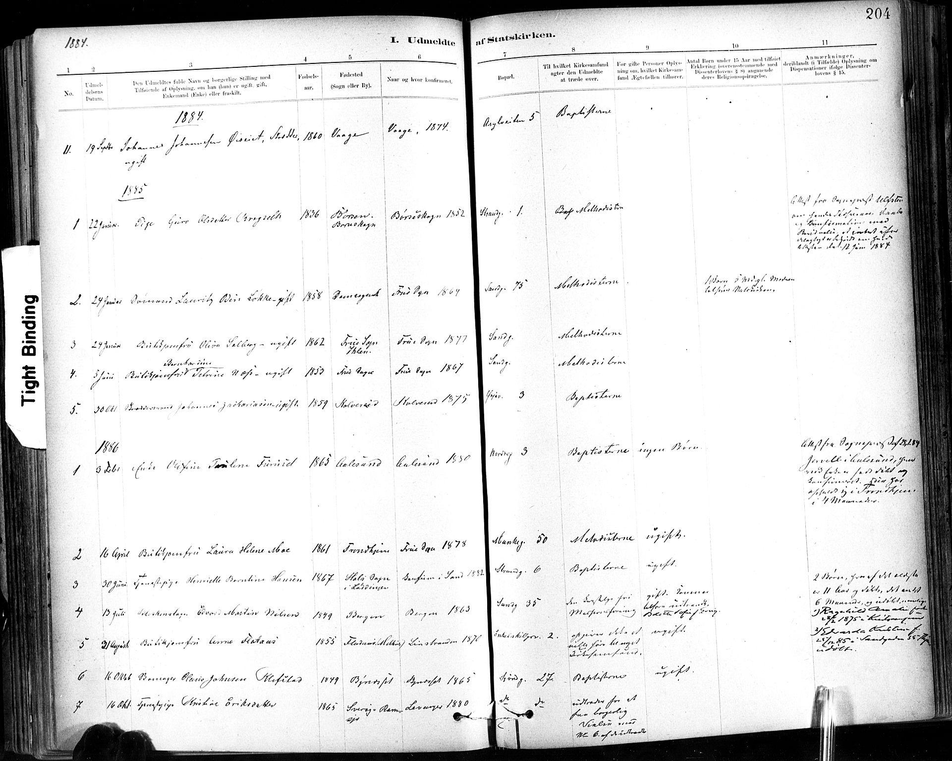 SAT, Ministerialprotokoller, klokkerbøker og fødselsregistre - Sør-Trøndelag, 602/L0120: Ministerialbok nr. 602A18, 1880-1913, s. 204