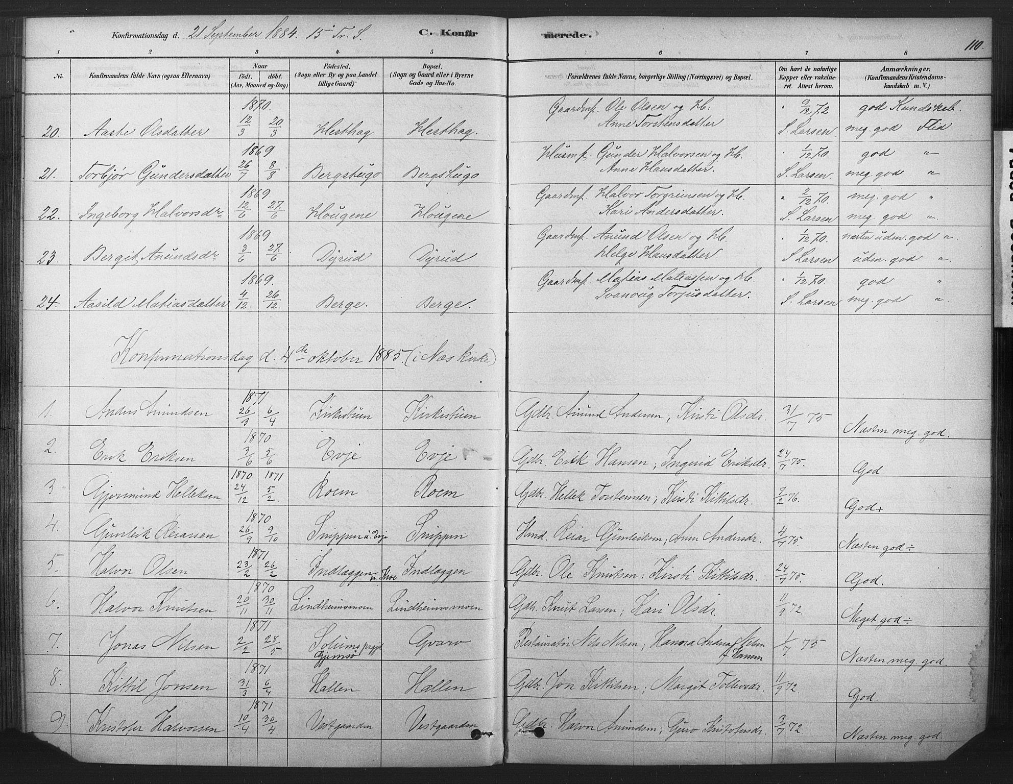 SAKO, Sauherad kirkebøker, F/Fb/L0002: Ministerialbok nr. II 2, 1878-1901, s. 110