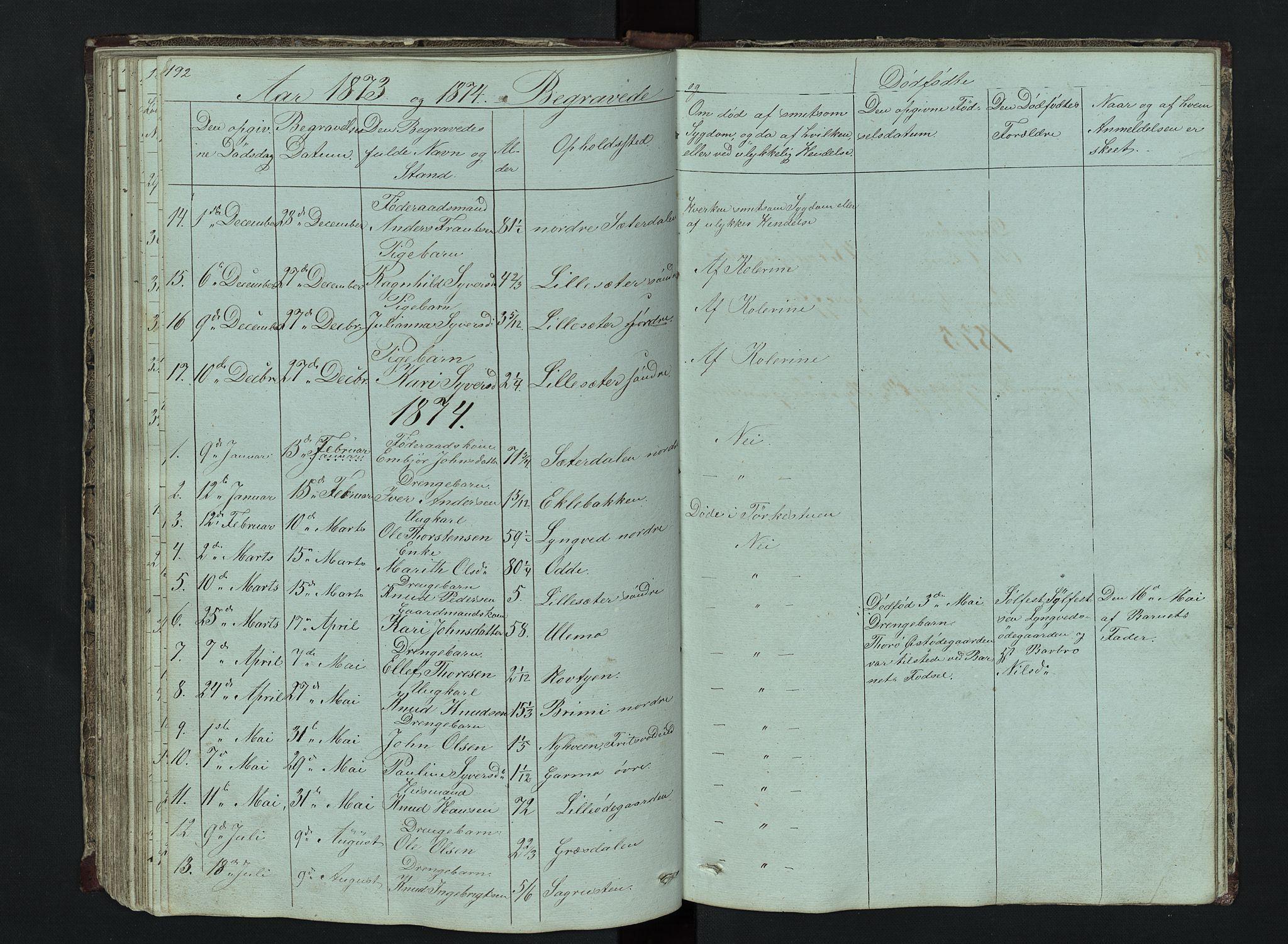 SAH, Lom prestekontor, L/L0014: Klokkerbok nr. 14, 1845-1876, s. 192-193
