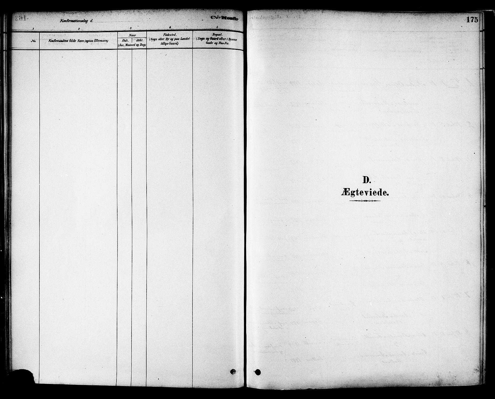 SAT, Ministerialprotokoller, klokkerbøker og fødselsregistre - Nord-Trøndelag, 717/L0159: Ministerialbok nr. 717A09, 1878-1898, s. 175