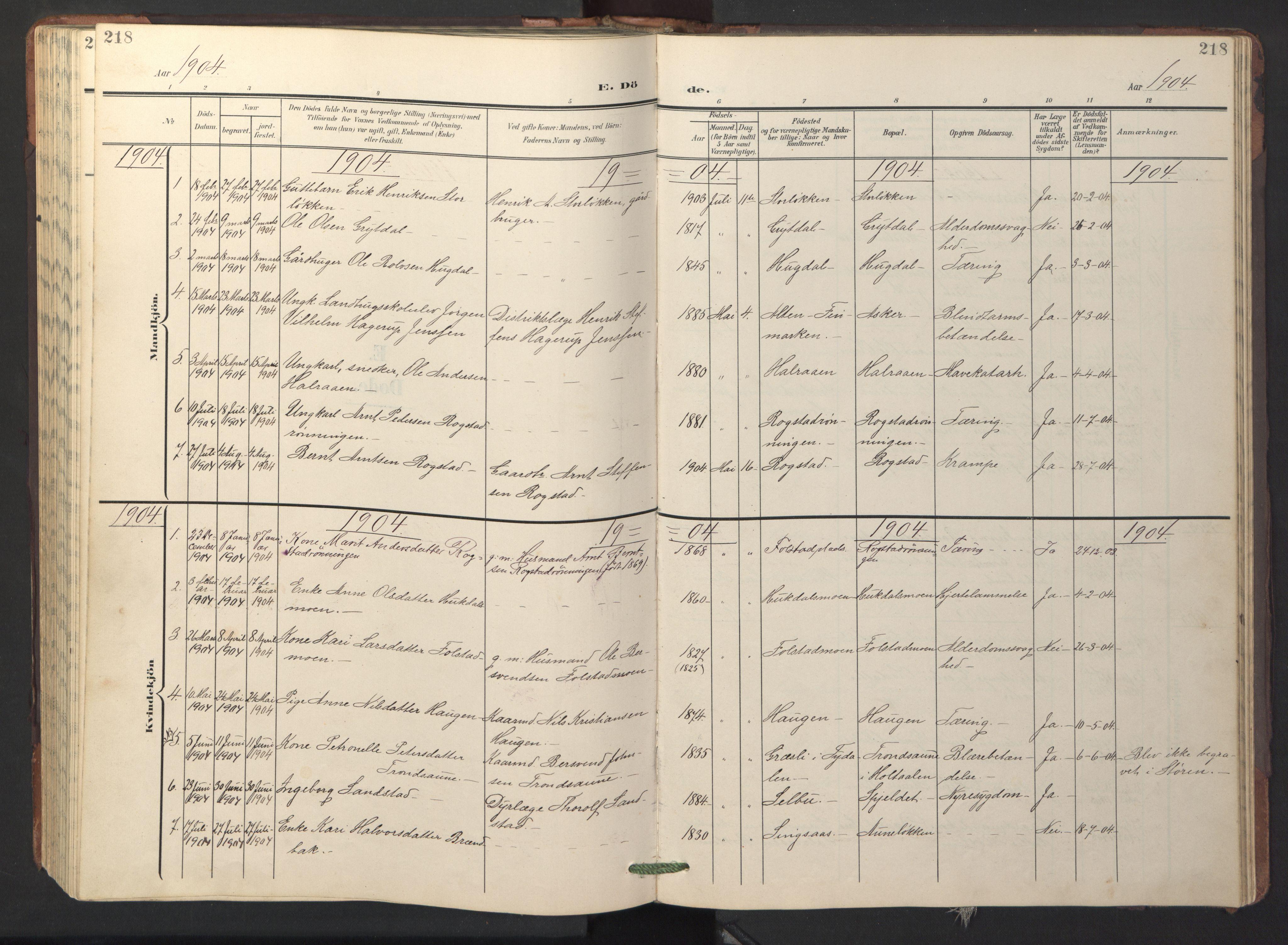 SAT, Ministerialprotokoller, klokkerbøker og fødselsregistre - Sør-Trøndelag, 687/L1019: Klokkerbok nr. 687C03, 1904-1931, s. 218