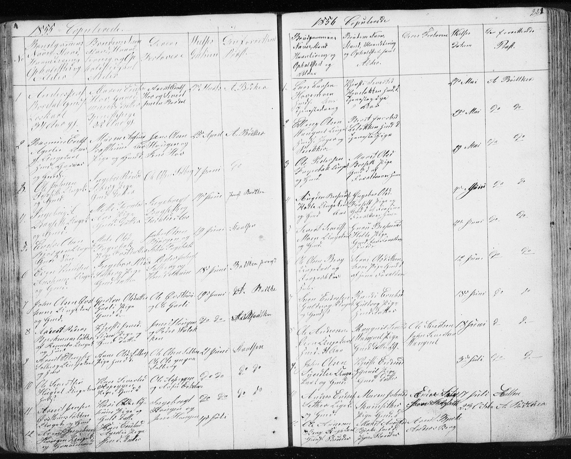 SAT, Ministerialprotokoller, klokkerbøker og fødselsregistre - Sør-Trøndelag, 689/L1043: Klokkerbok nr. 689C02, 1816-1892, s. 222