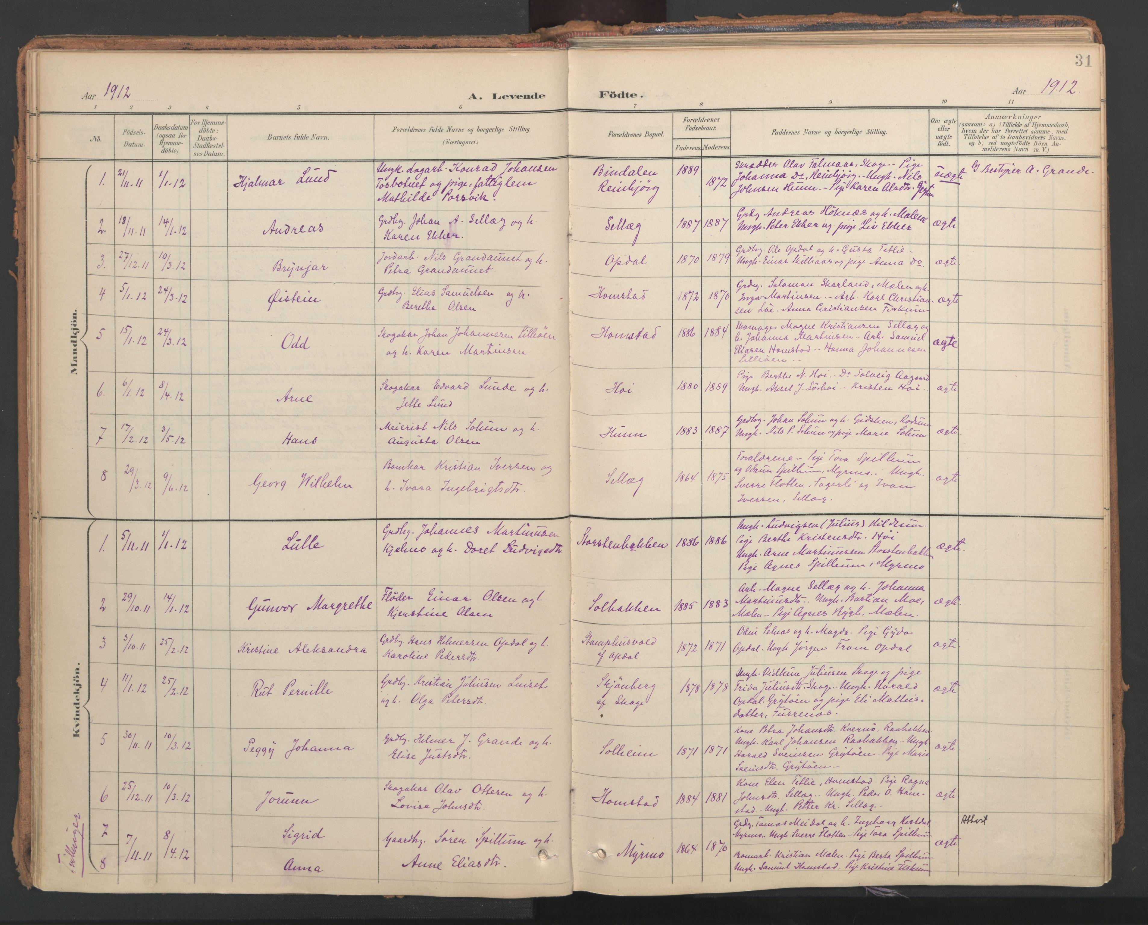 SAT, Ministerialprotokoller, klokkerbøker og fødselsregistre - Nord-Trøndelag, 766/L0564: Ministerialbok nr. 767A02, 1900-1932, s. 31