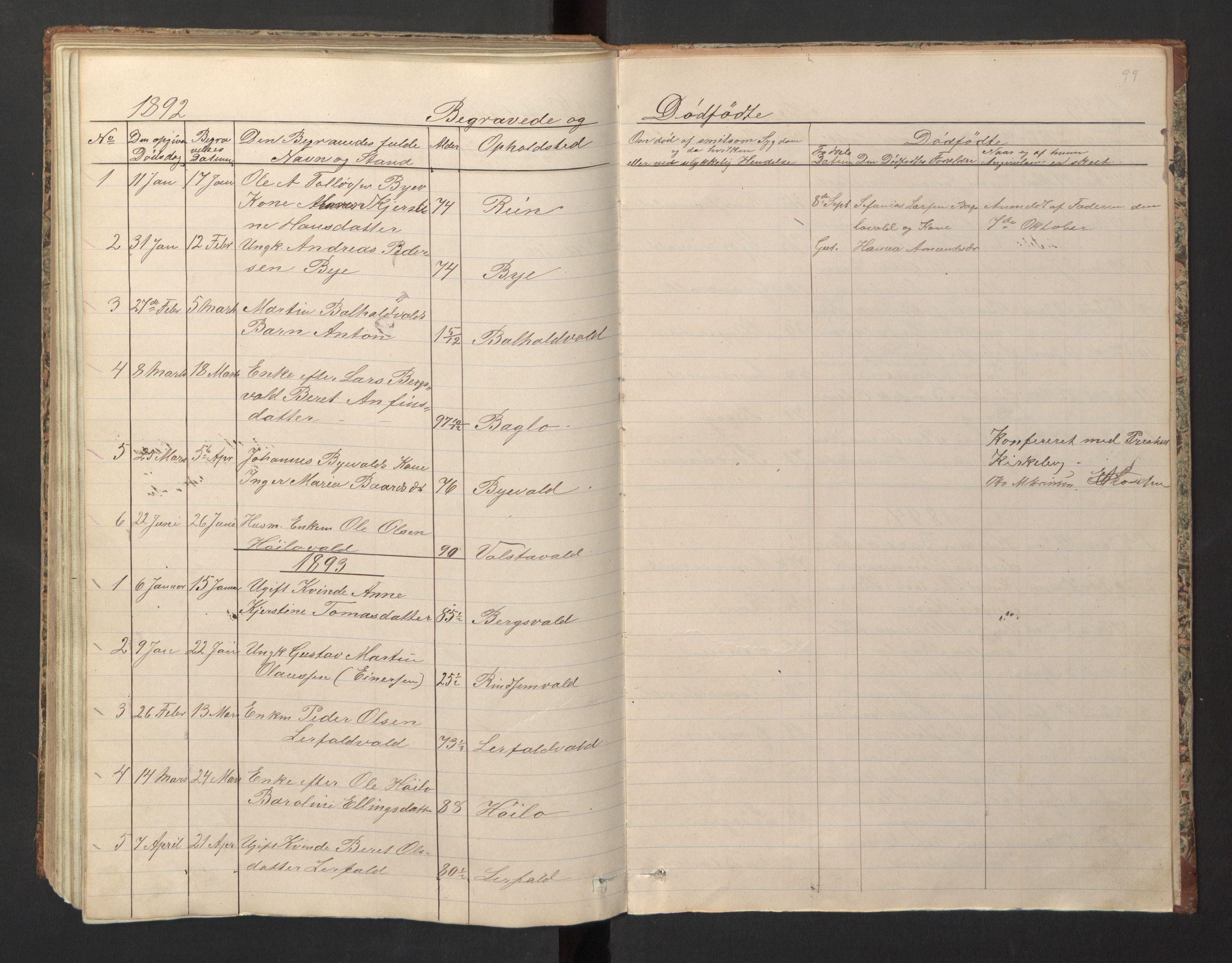 SAT, Ministerialprotokoller, klokkerbøker og fødselsregistre - Nord-Trøndelag, 726/L0271: Klokkerbok nr. 726C02, 1869-1897, s. 99
