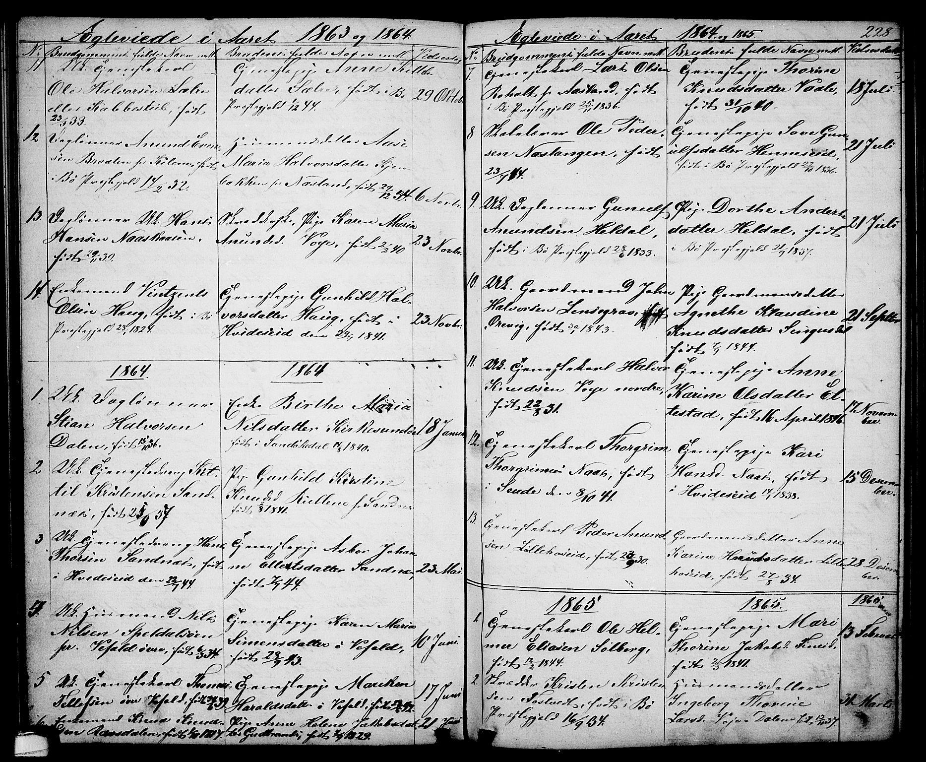 SAKO, Drangedal kirkebøker, G/Ga/L0002: Klokkerbok nr. I 2, 1856-1887, s. 228