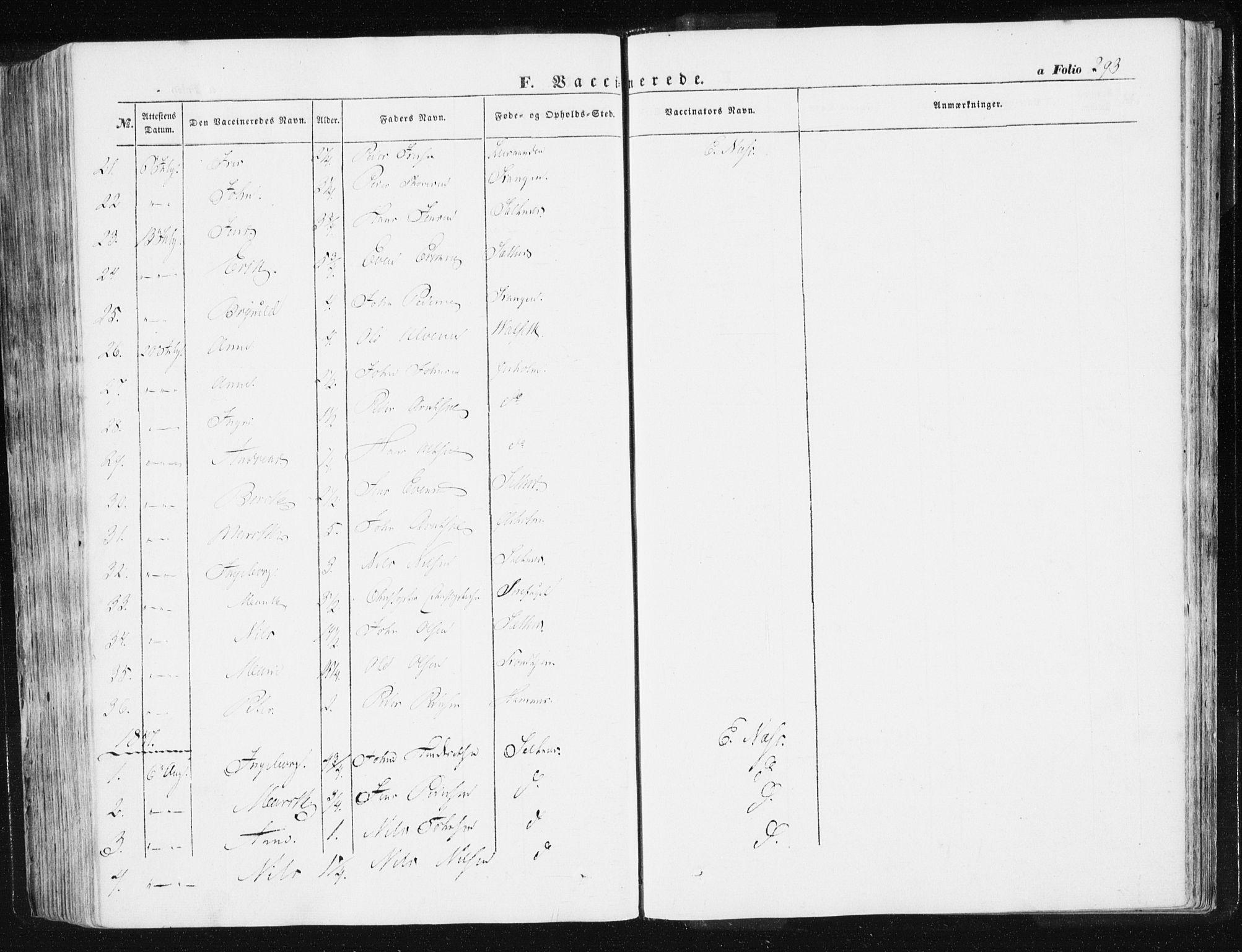 SAT, Ministerialprotokoller, klokkerbøker og fødselsregistre - Sør-Trøndelag, 612/L0376: Ministerialbok nr. 612A08, 1846-1859, s. 293