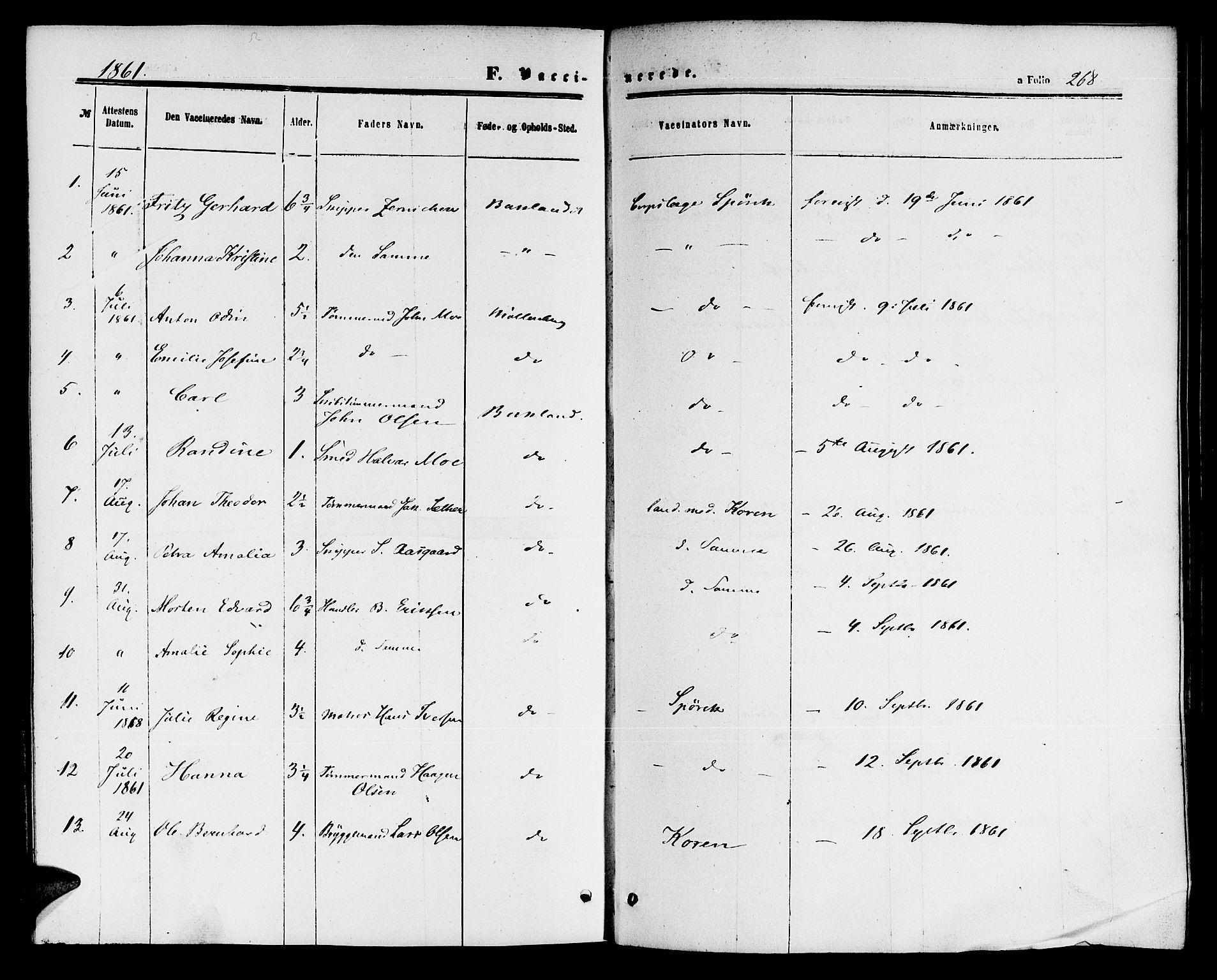 SAT, Ministerialprotokoller, klokkerbøker og fødselsregistre - Sør-Trøndelag, 604/L0185: Ministerialbok nr. 604A06, 1861-1865, s. 268