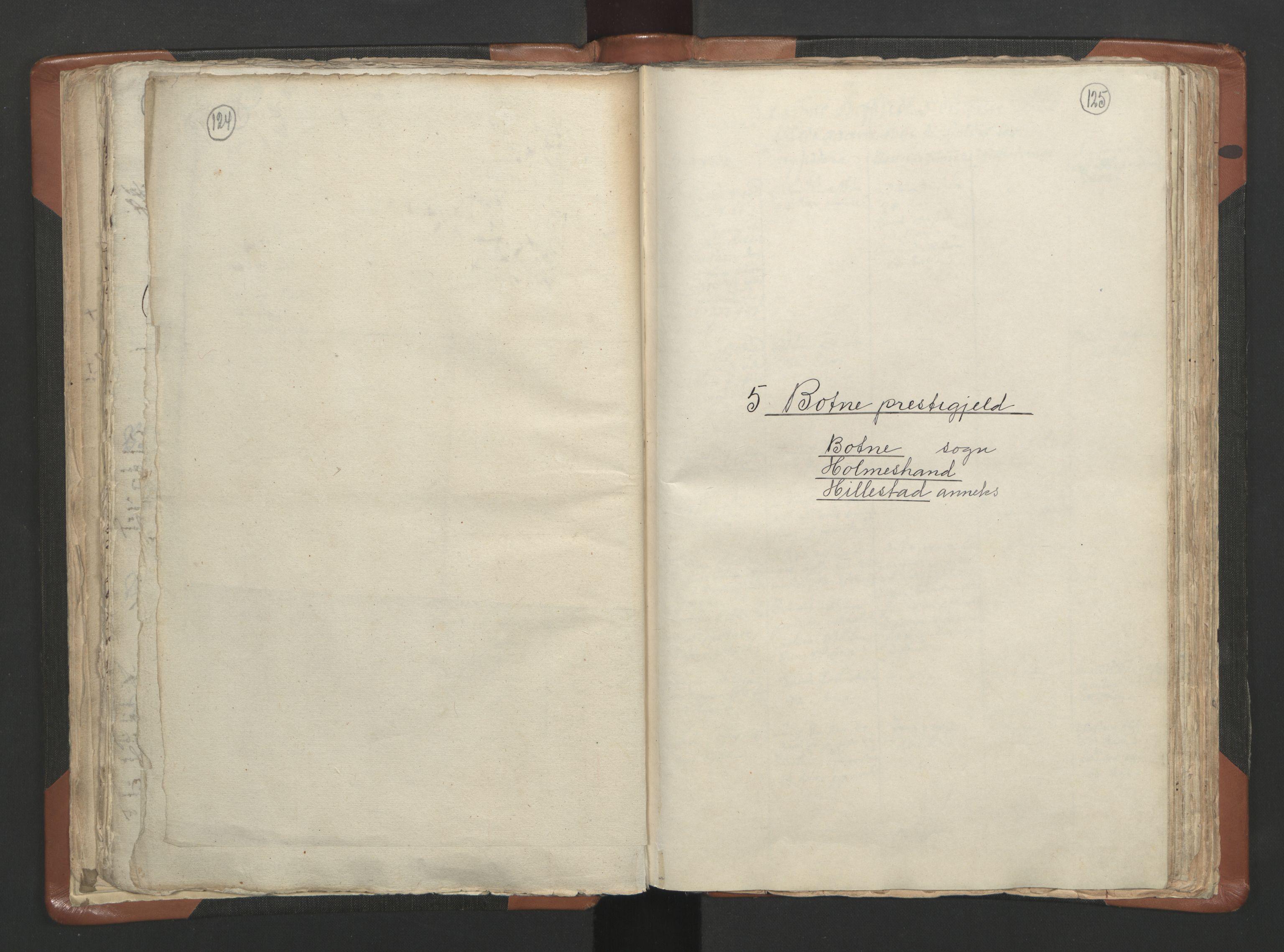 RA, Sogneprestenes manntall 1664-1666, nr. 10: Tønsberg prosti, 1664-1666, s. 124-125