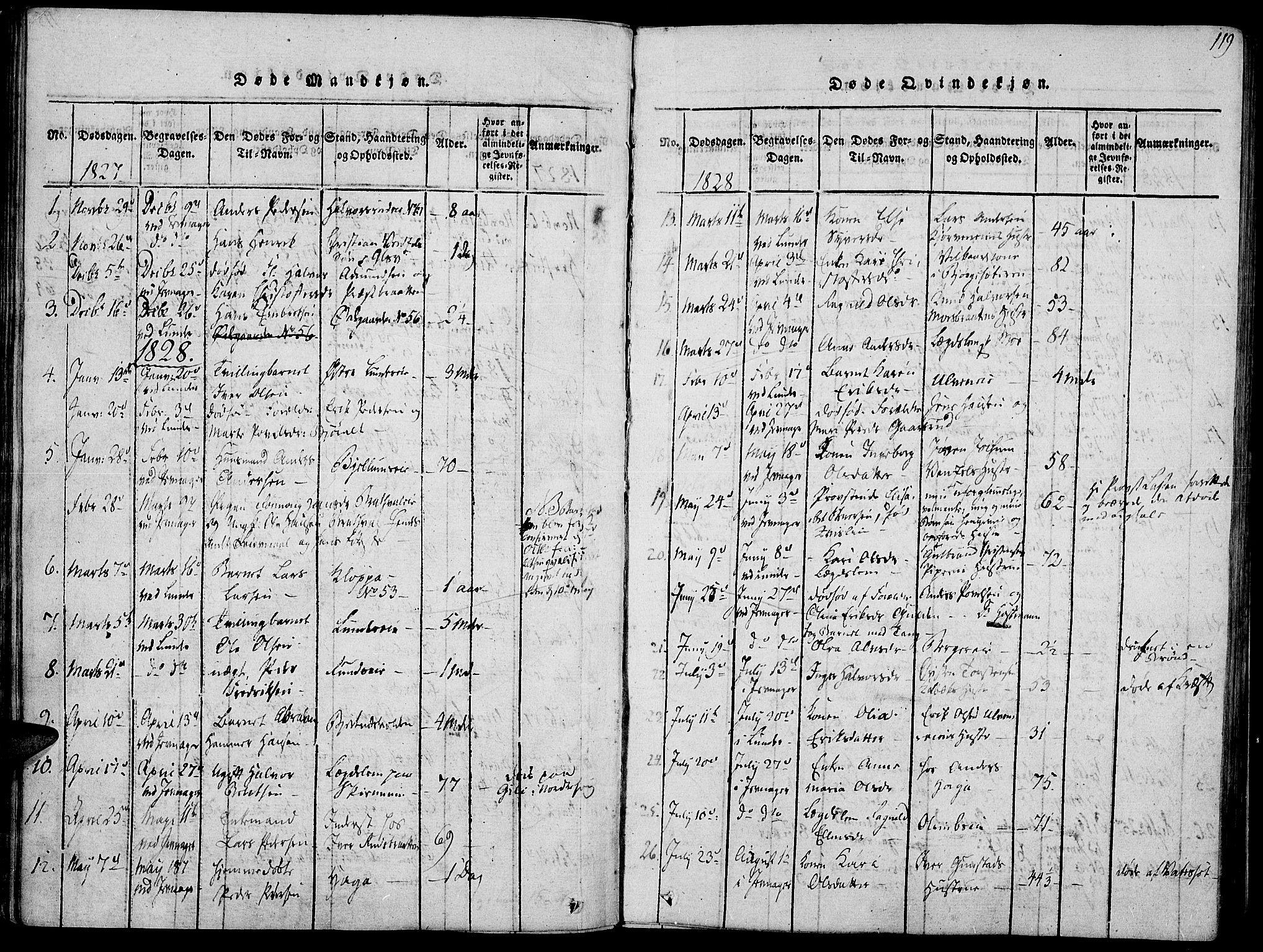 SAH, Jevnaker prestekontor, Ministerialbok nr. 5, 1815-1837, s. 119