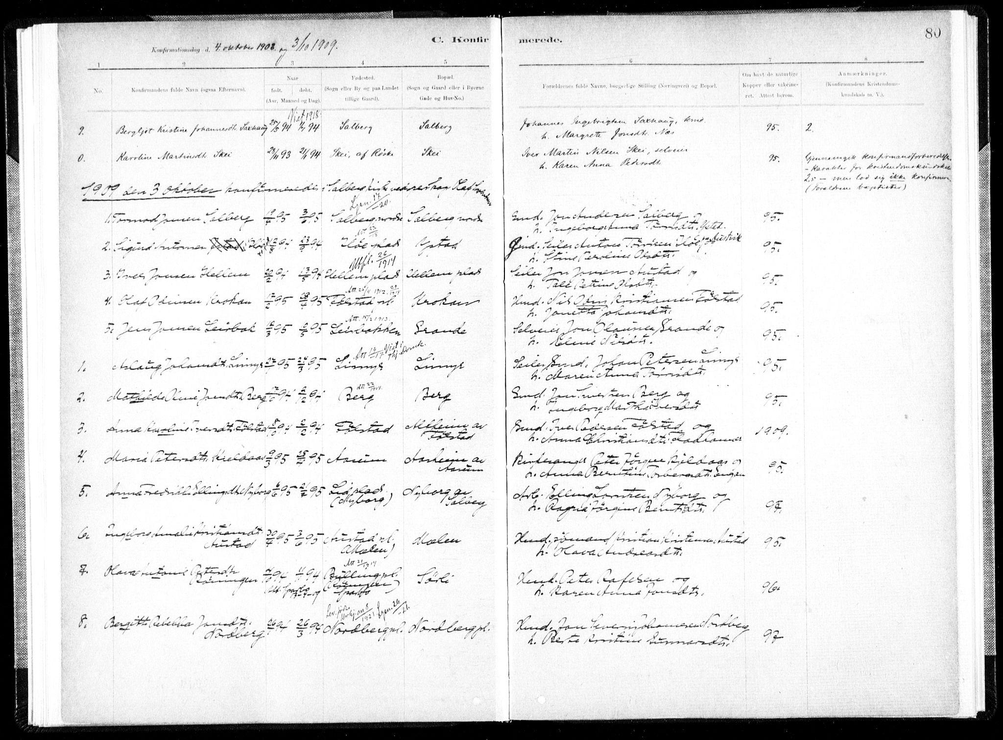 SAT, Ministerialprotokoller, klokkerbøker og fødselsregistre - Nord-Trøndelag, 731/L0309: Ministerialbok nr. 731A01, 1879-1918, s. 80