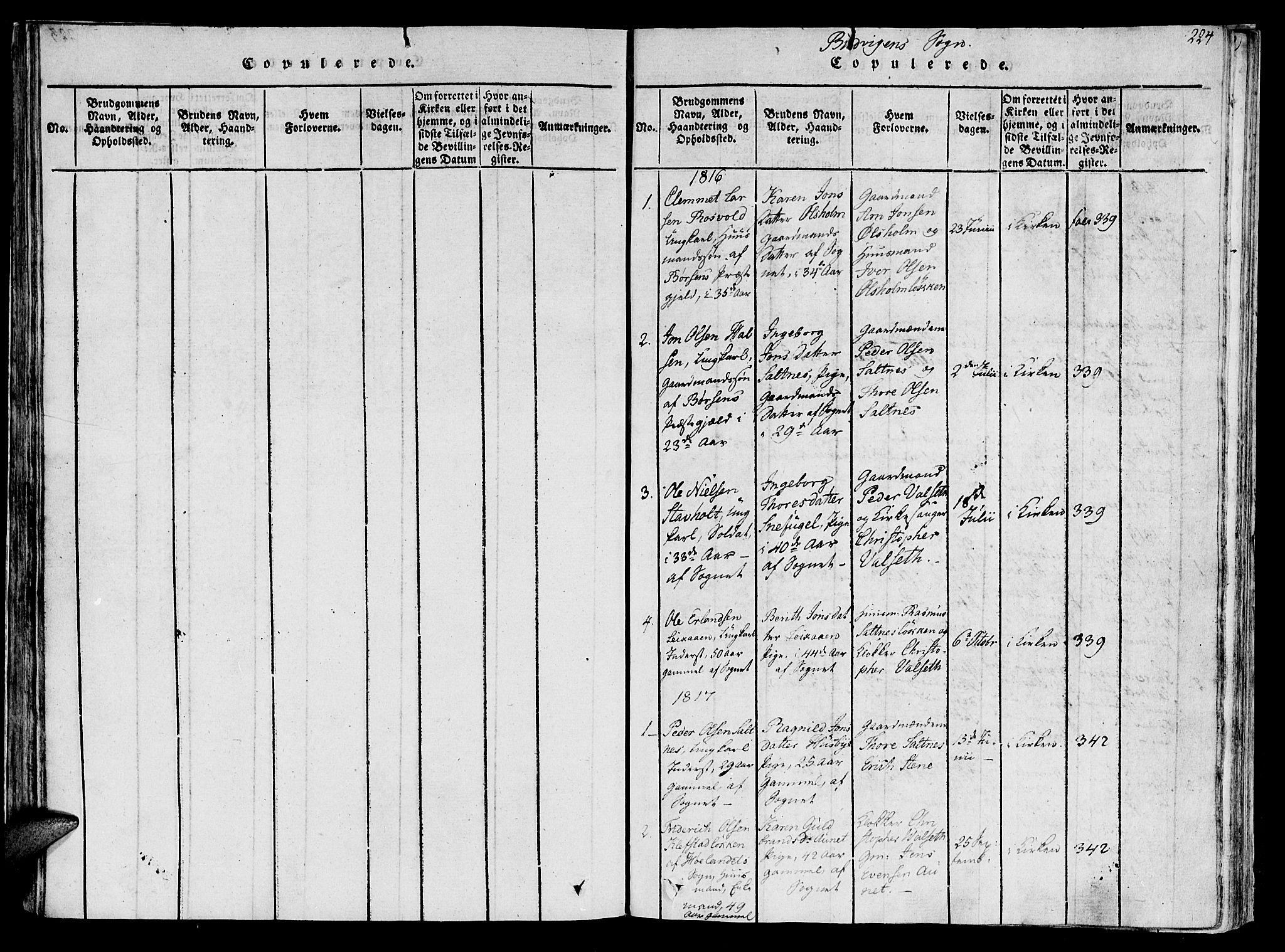 SAT, Ministerialprotokoller, klokkerbøker og fødselsregistre - Sør-Trøndelag, 612/L0373: Ministerialbok nr. 612A06 /2, 1816-1828, s. 224