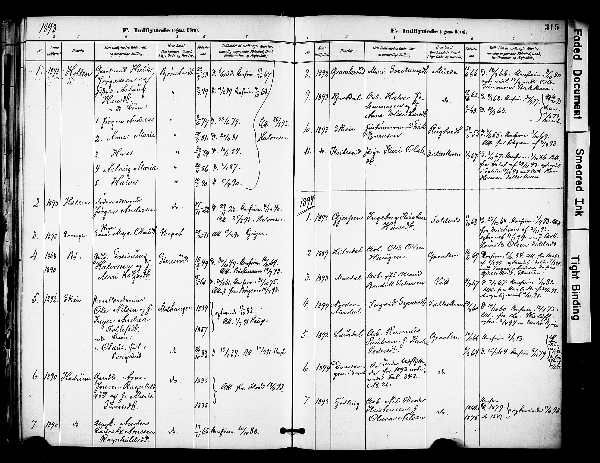 SAKO, Solum kirkebøker, F/Fa/L0010: Ministerialbok nr. I 10, 1888-1898, s. 315