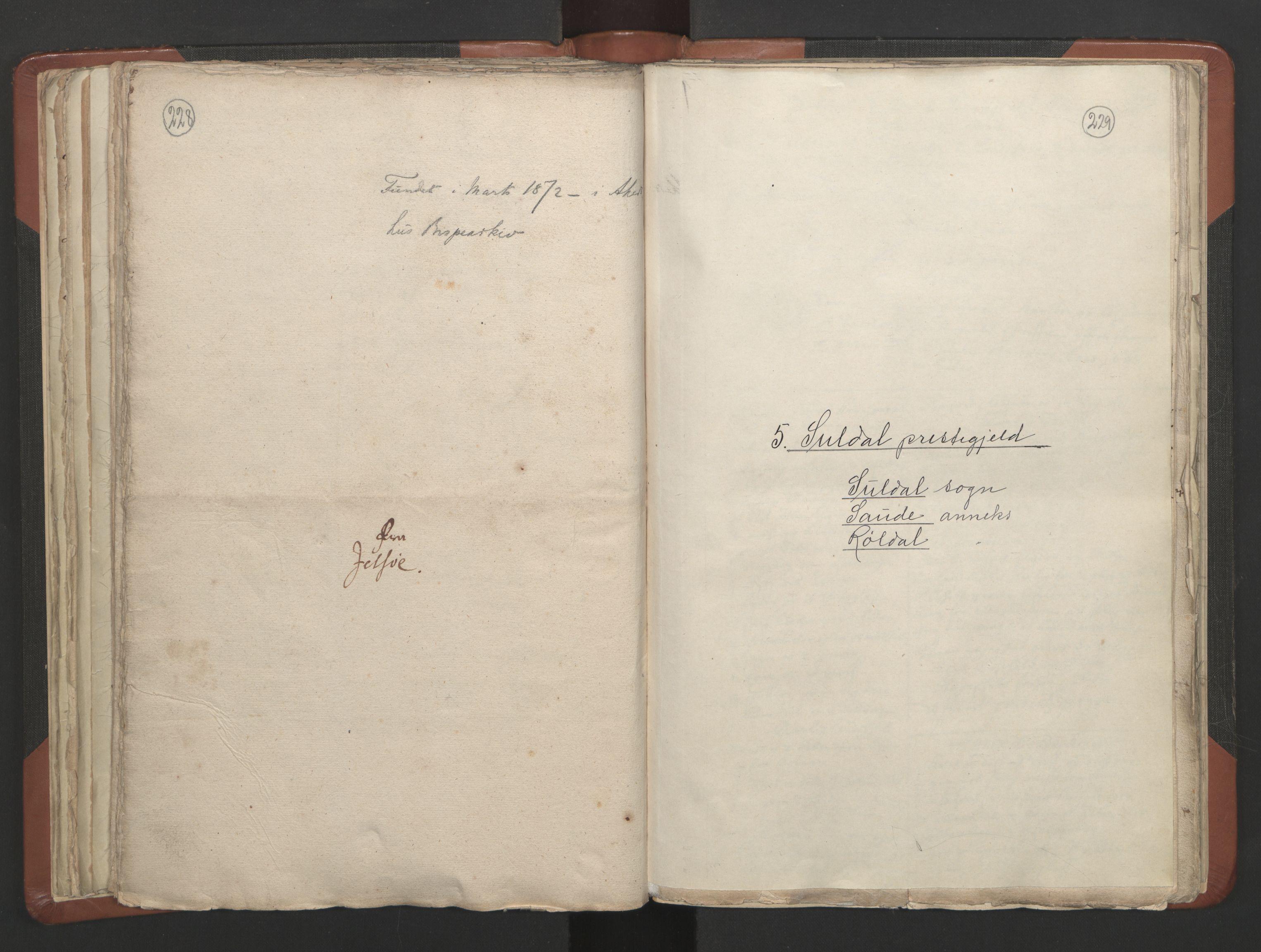 RA, Sogneprestenes manntall 1664-1666, nr. 19: Ryfylke prosti, 1664-1666, s. 228-229
