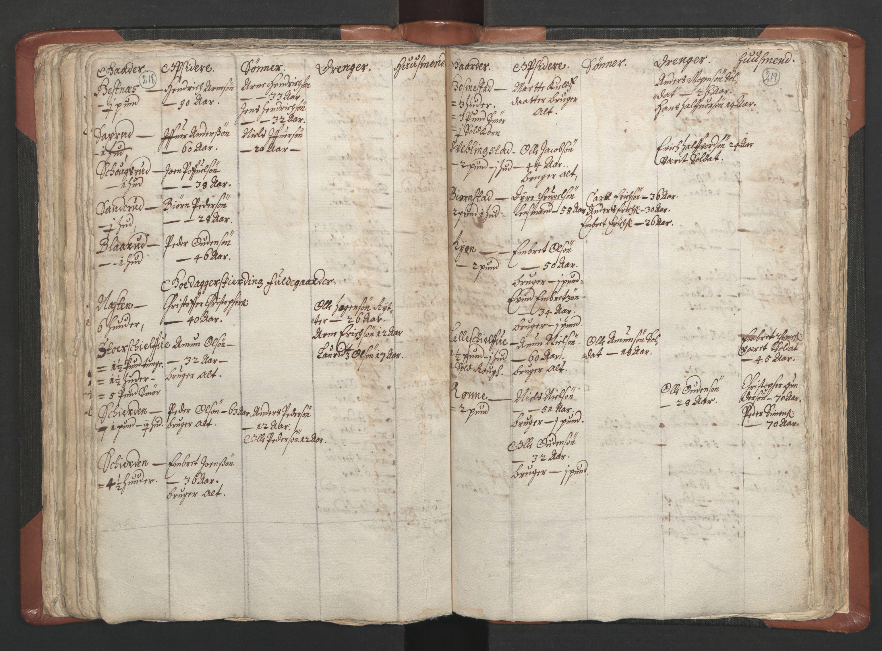 RA, Sogneprestenes manntall 1664-1666, nr. 5: Hedmark prosti, 1664-1666, s. 218-219