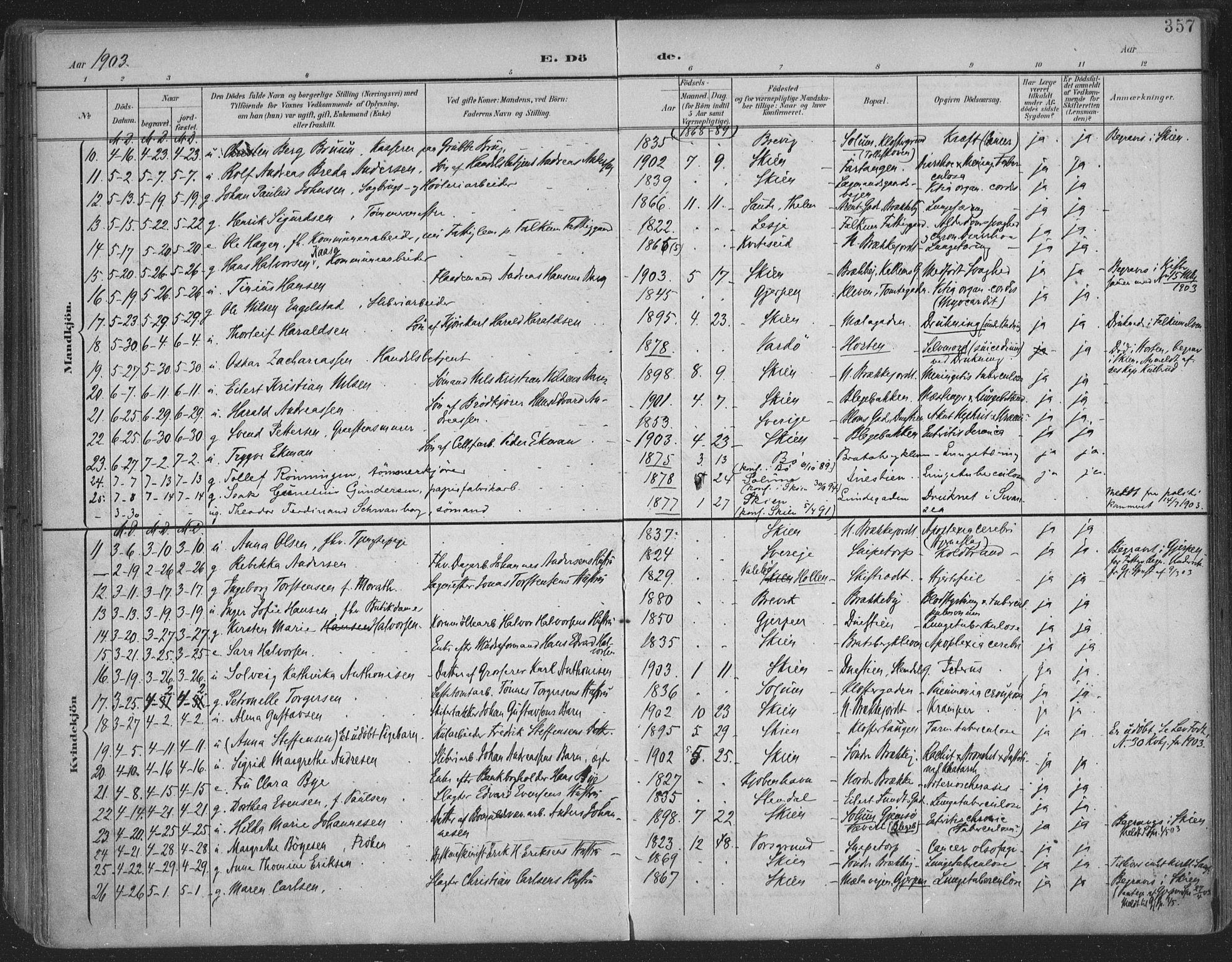 SAKO, Skien kirkebøker, F/Fa/L0011: Ministerialbok nr. 11, 1900-1907, s. 357