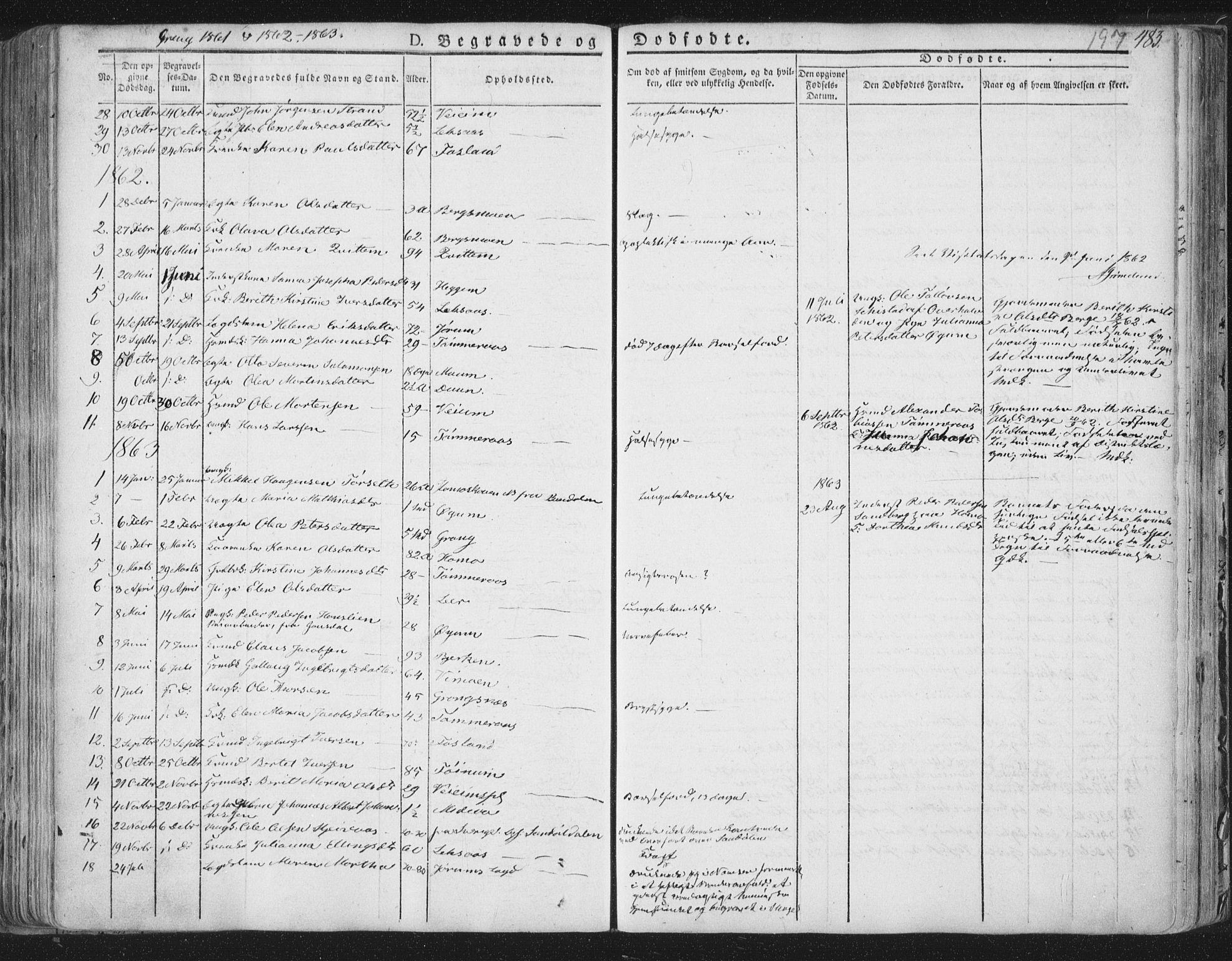 SAT, Ministerialprotokoller, klokkerbøker og fødselsregistre - Nord-Trøndelag, 758/L0513: Ministerialbok nr. 758A02 /1, 1839-1868, s. 197