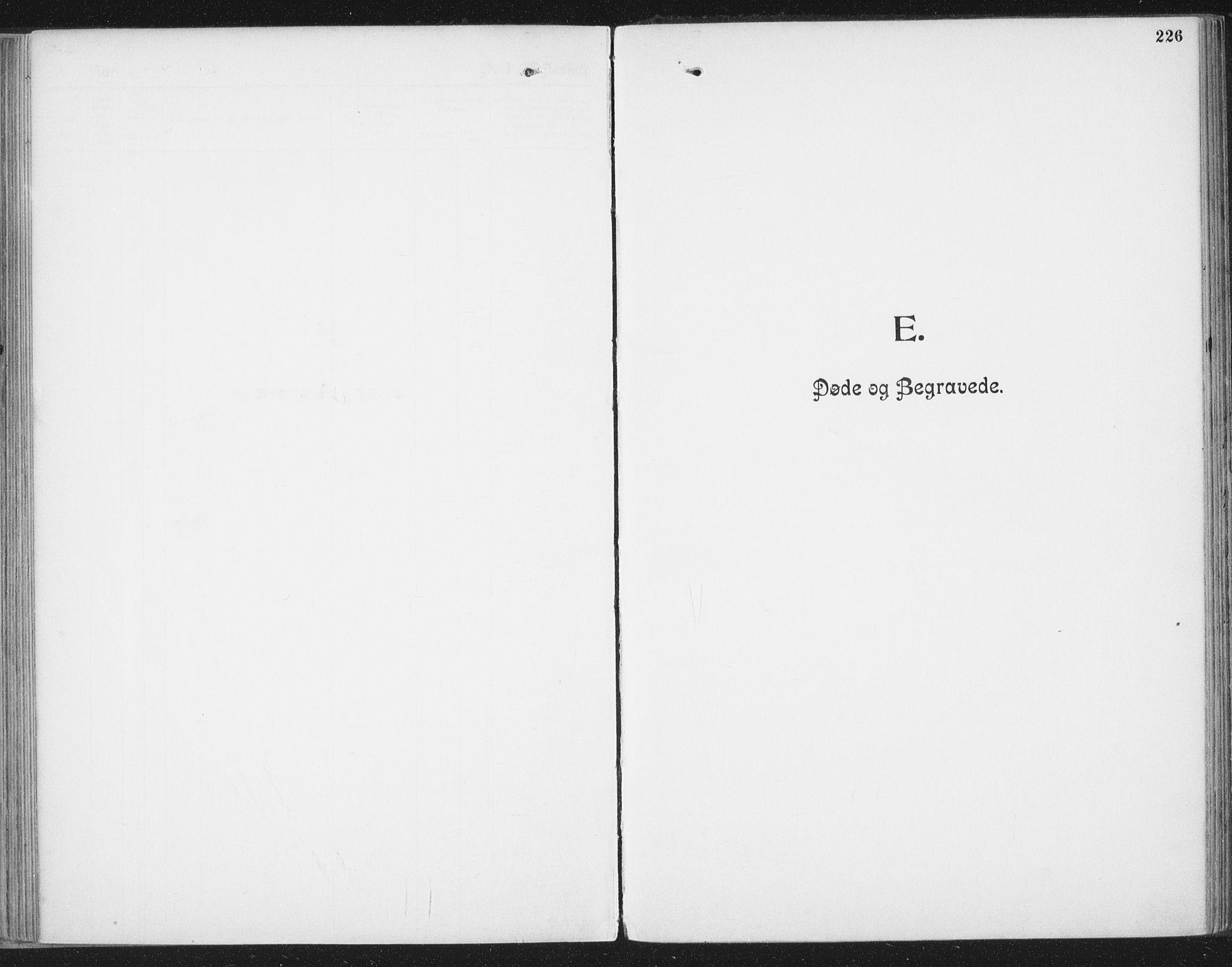 SAT, Ministerialprotokoller, klokkerbøker og fødselsregistre - Nordland, 804/L0081: Ministerialbok nr. 804A02, 1901-1915, s. 226