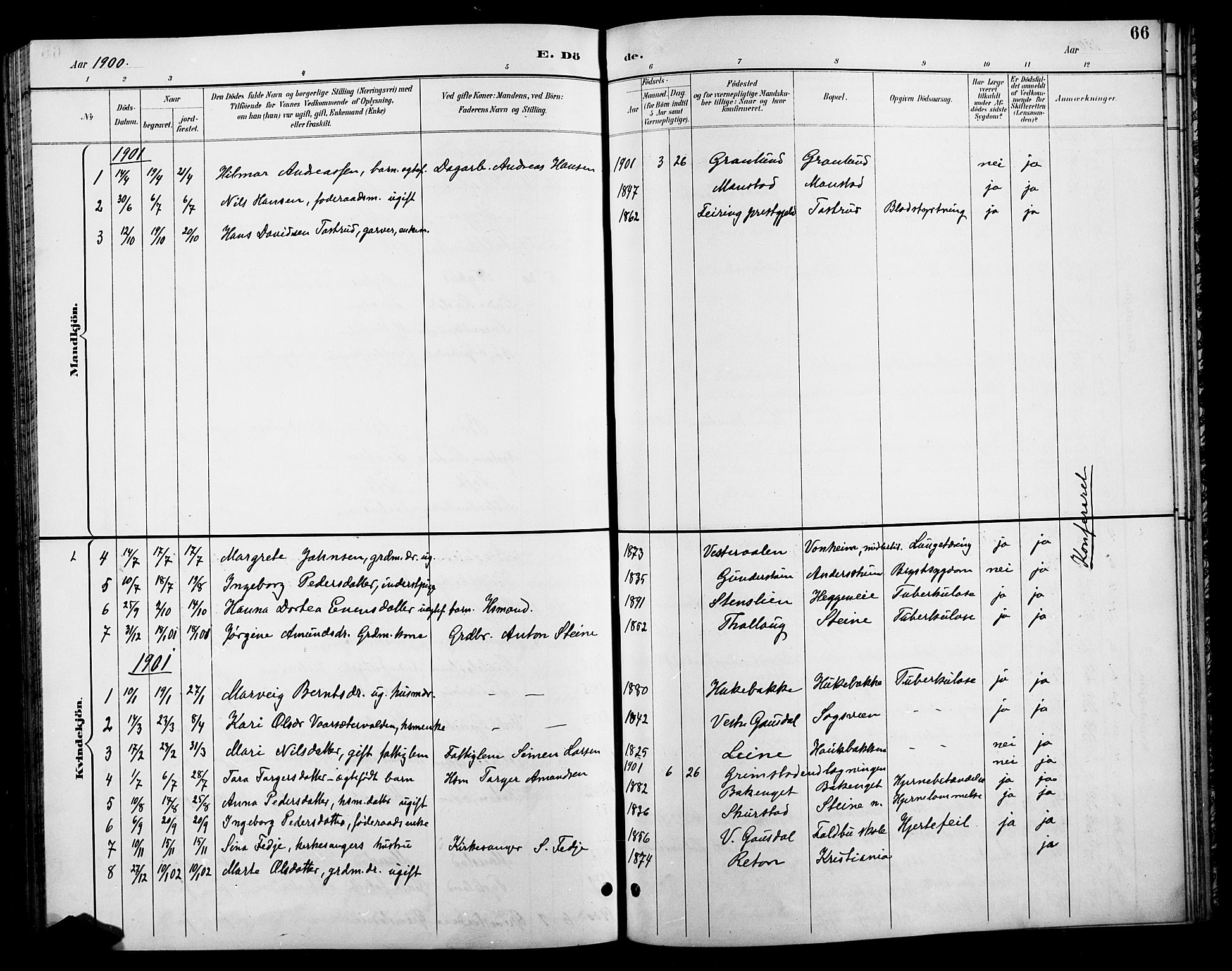 SAH, Østre Gausdal prestekontor, Klokkerbok nr. 3, 1894-1915, s. 66