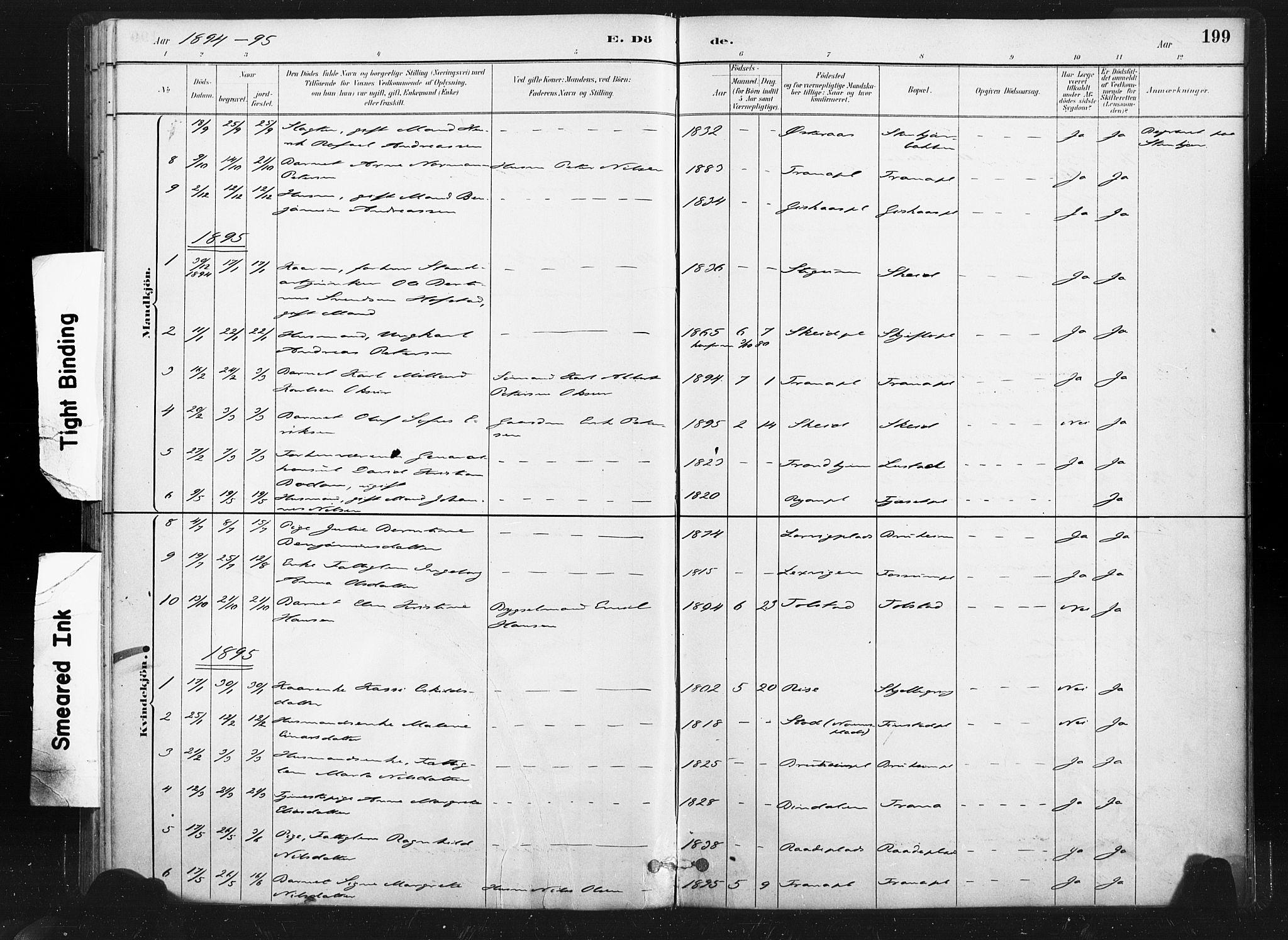 SAT, Ministerialprotokoller, klokkerbøker og fødselsregistre - Nord-Trøndelag, 736/L0361: Ministerialbok nr. 736A01, 1884-1906, s. 199