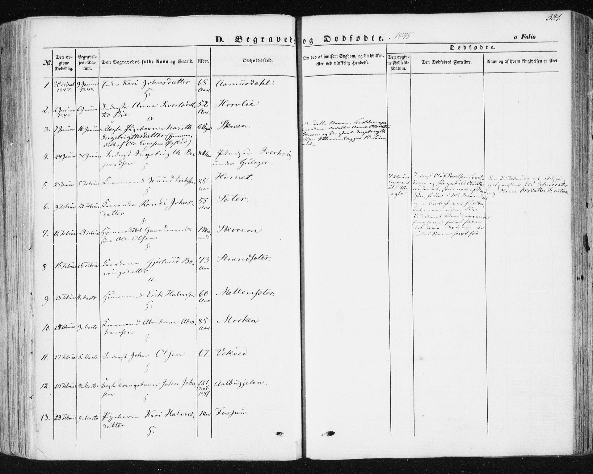 SAT, Ministerialprotokoller, klokkerbøker og fødselsregistre - Sør-Trøndelag, 678/L0899: Ministerialbok nr. 678A08, 1848-1872, s. 381