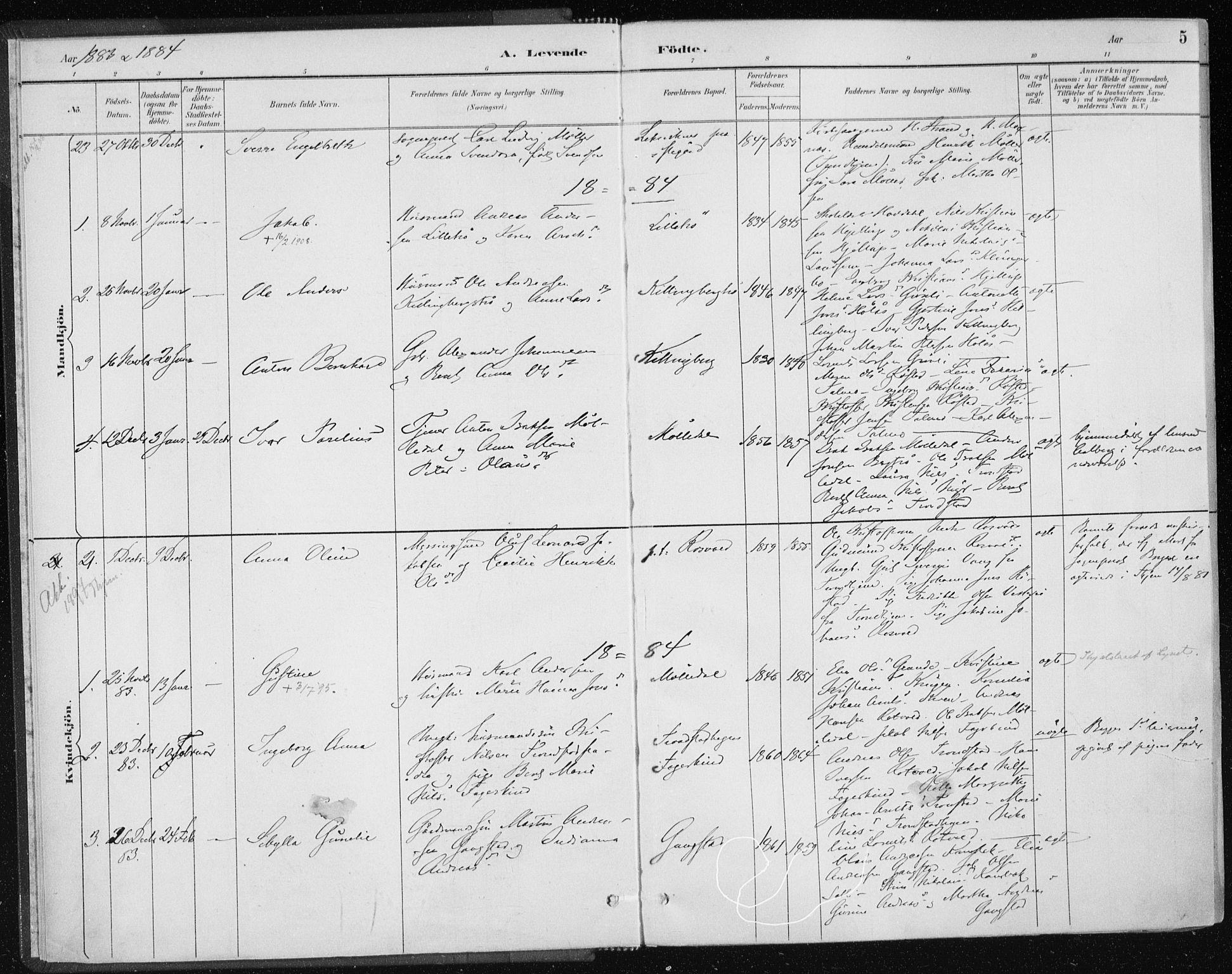 SAT, Ministerialprotokoller, klokkerbøker og fødselsregistre - Nord-Trøndelag, 701/L0010: Ministerialbok nr. 701A10, 1883-1899, s. 5