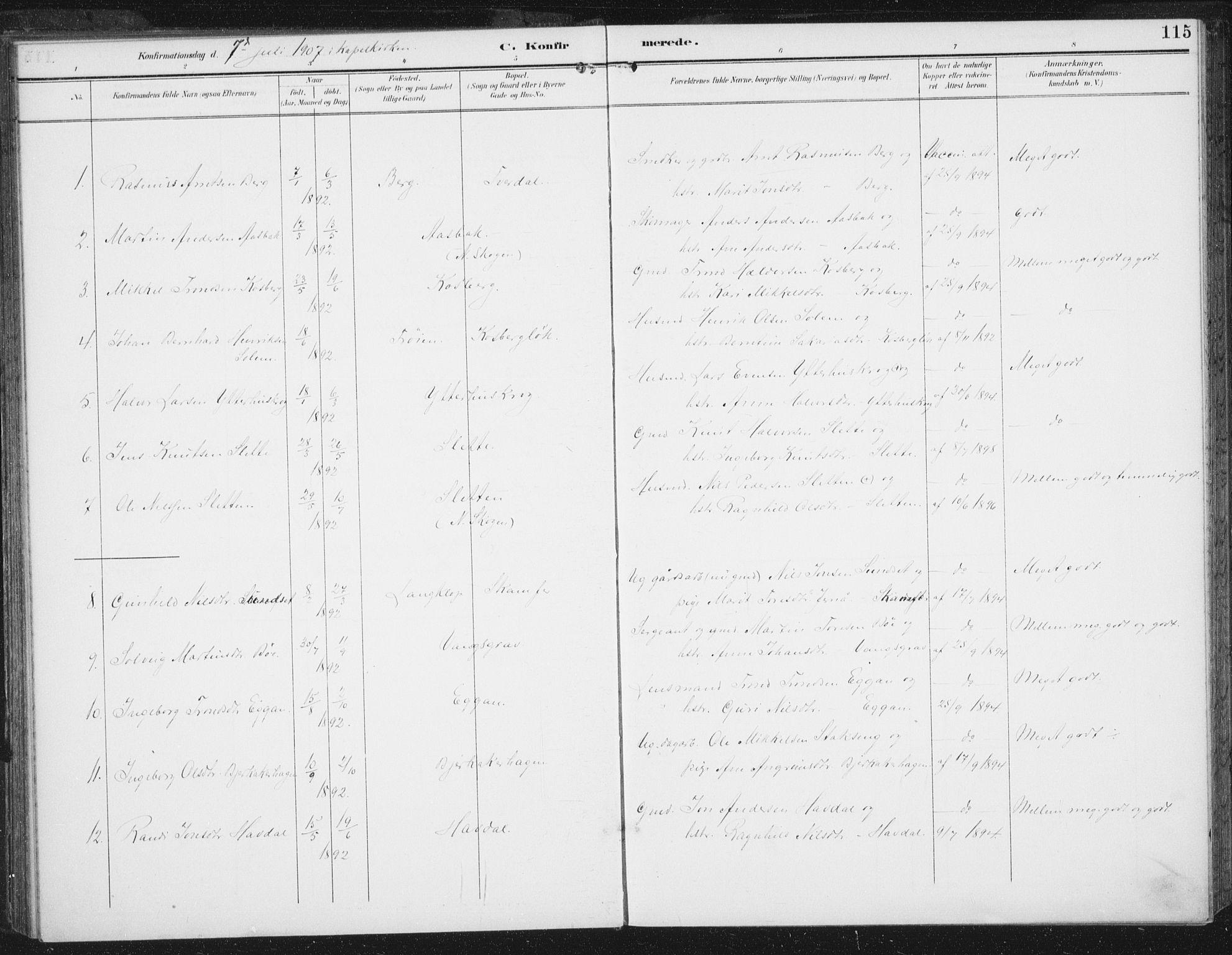 SAT, Ministerialprotokoller, klokkerbøker og fødselsregistre - Sør-Trøndelag, 674/L0872: Ministerialbok nr. 674A04, 1897-1907, s. 115