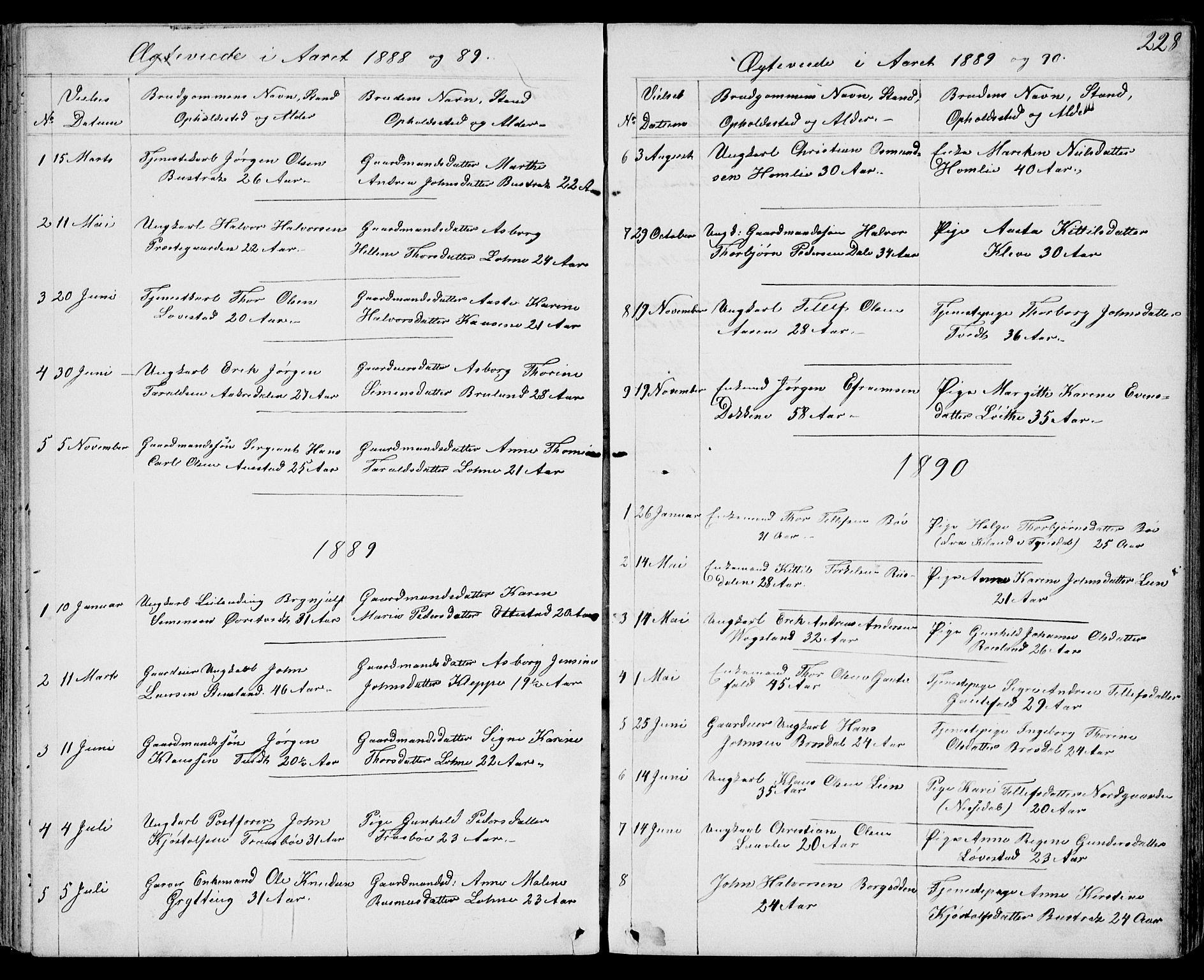 SAKO, Drangedal kirkebøker, G/Gb/L0001: Klokkerbok nr. II 1, 1856-1894, s. 228