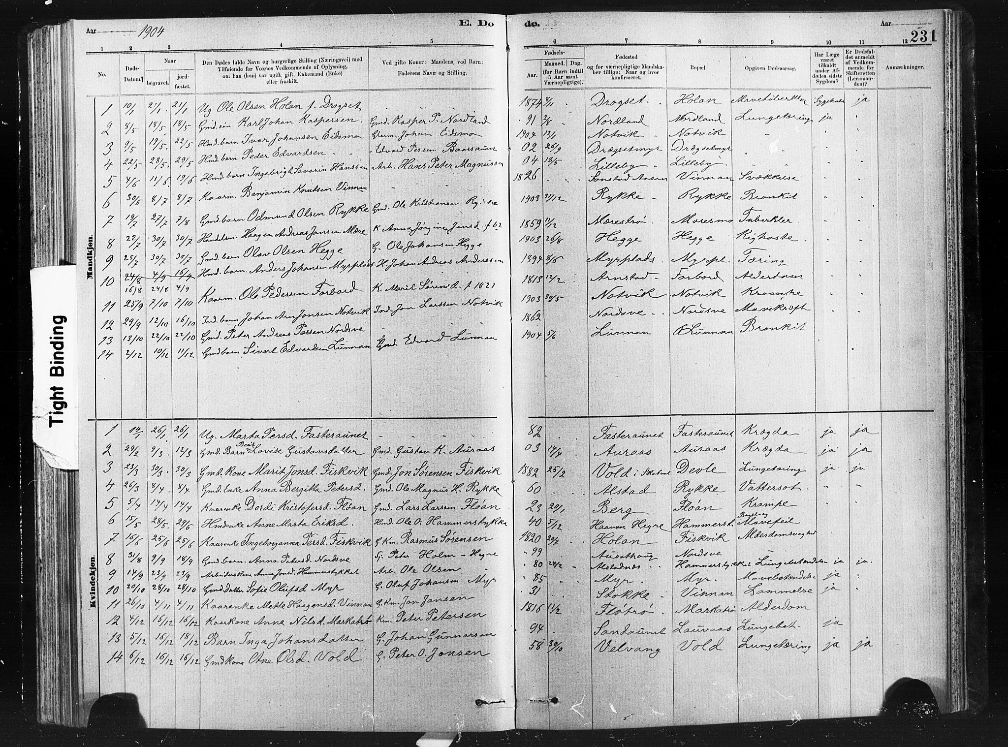 SAT, Ministerialprotokoller, klokkerbøker og fødselsregistre - Nord-Trøndelag, 712/L0103: Klokkerbok nr. 712C01, 1878-1917, s. 231