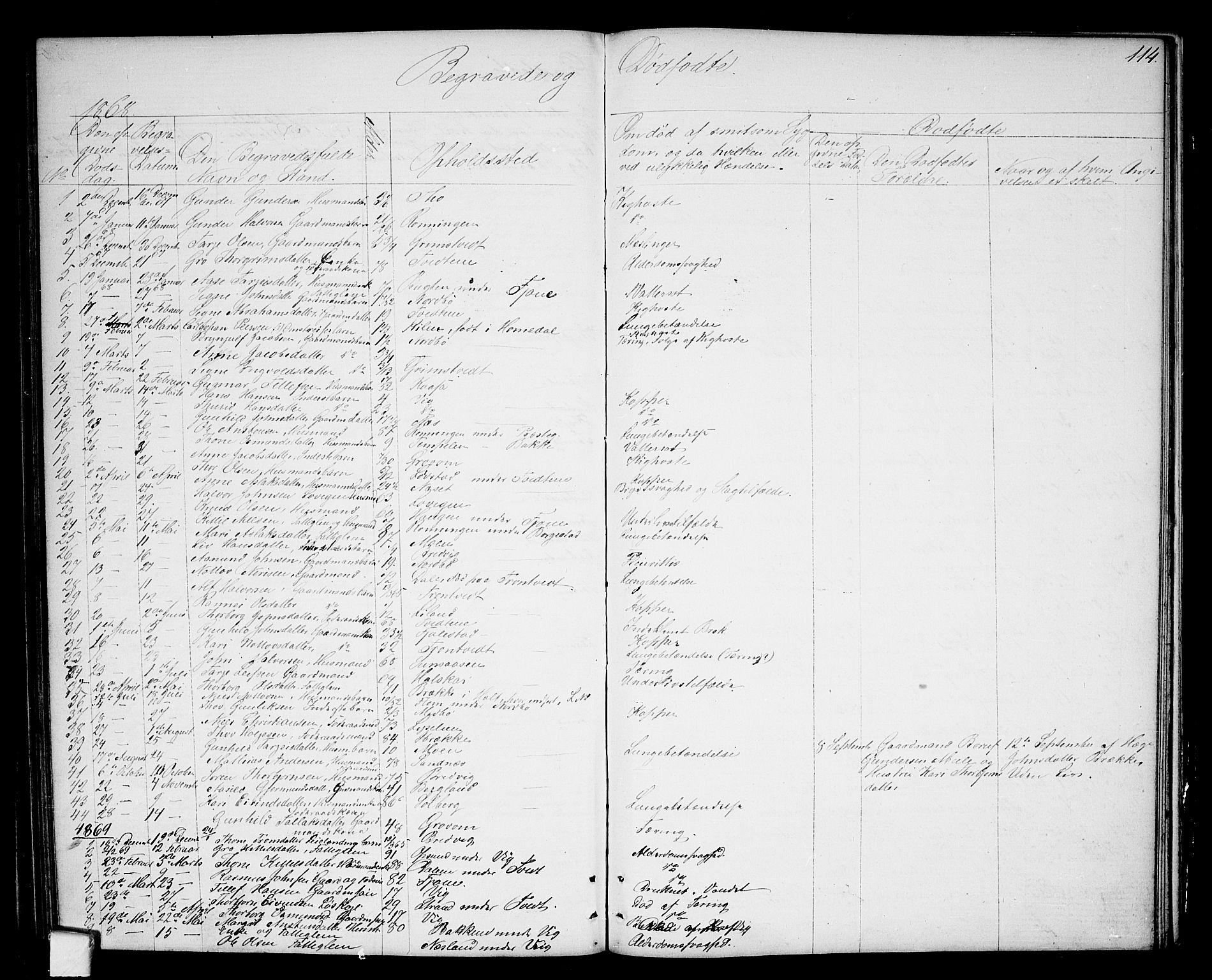 SAKO, Nissedal kirkebøker, G/Ga/L0002: Klokkerbok nr. I 2, 1861-1887, s. 114