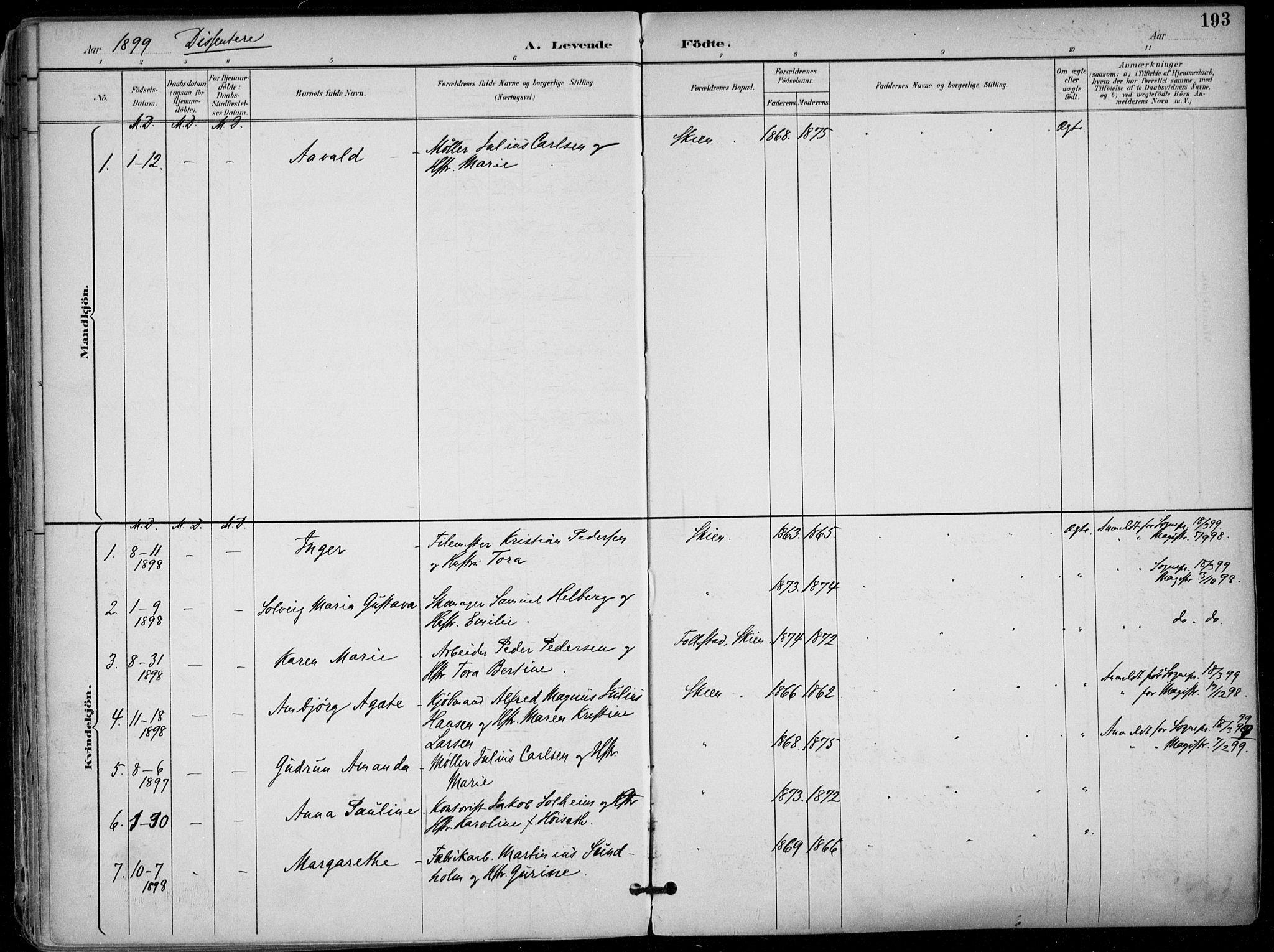 SAKO, Skien kirkebøker, F/Fa/L0010: Ministerialbok nr. 10, 1891-1899, s. 193