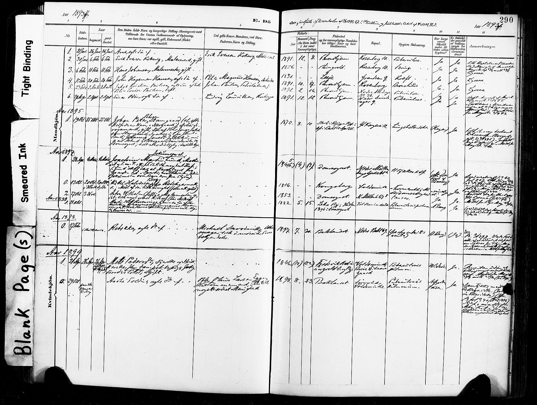 SAT, Ministerialprotokoller, klokkerbøker og fødselsregistre - Sør-Trøndelag, 604/L0198: Ministerialbok nr. 604A19, 1893-1900, s. 290