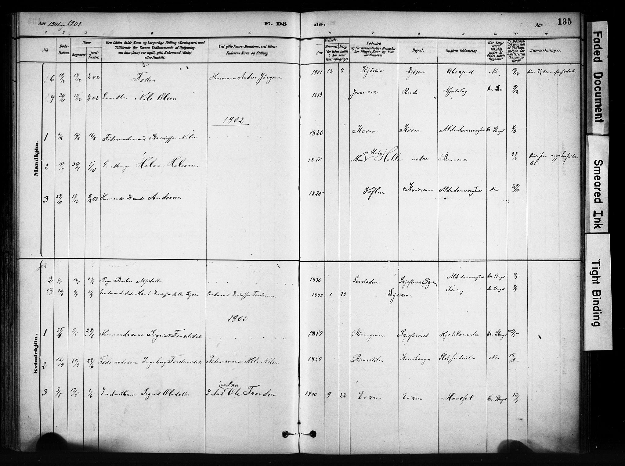 SAH, Vang prestekontor, Valdres, Ministerialbok nr. 9, 1882-1914, s. 135
