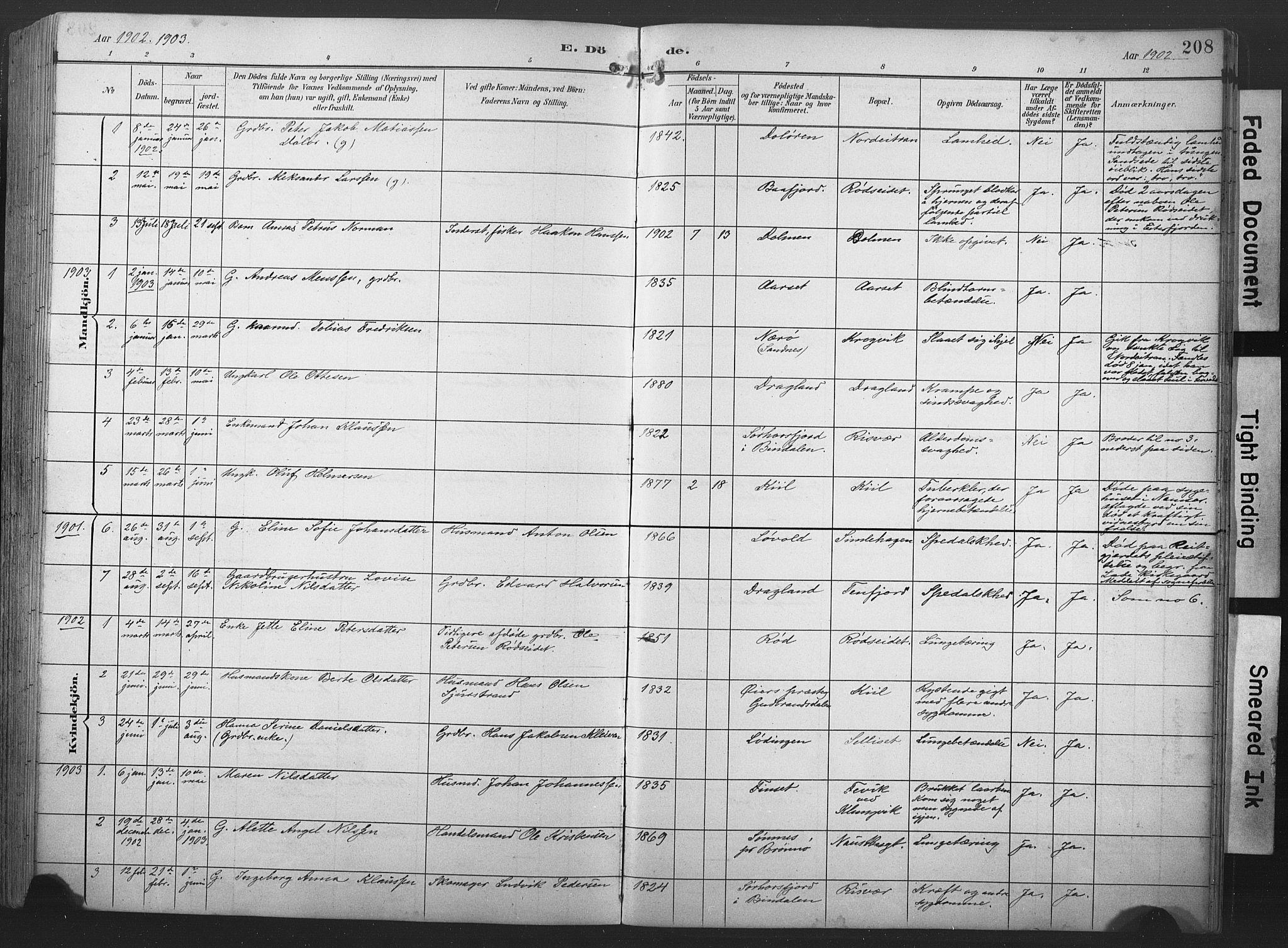SAT, Ministerialprotokoller, klokkerbøker og fødselsregistre - Nord-Trøndelag, 789/L0706: Klokkerbok nr. 789C01, 1888-1931, s. 208