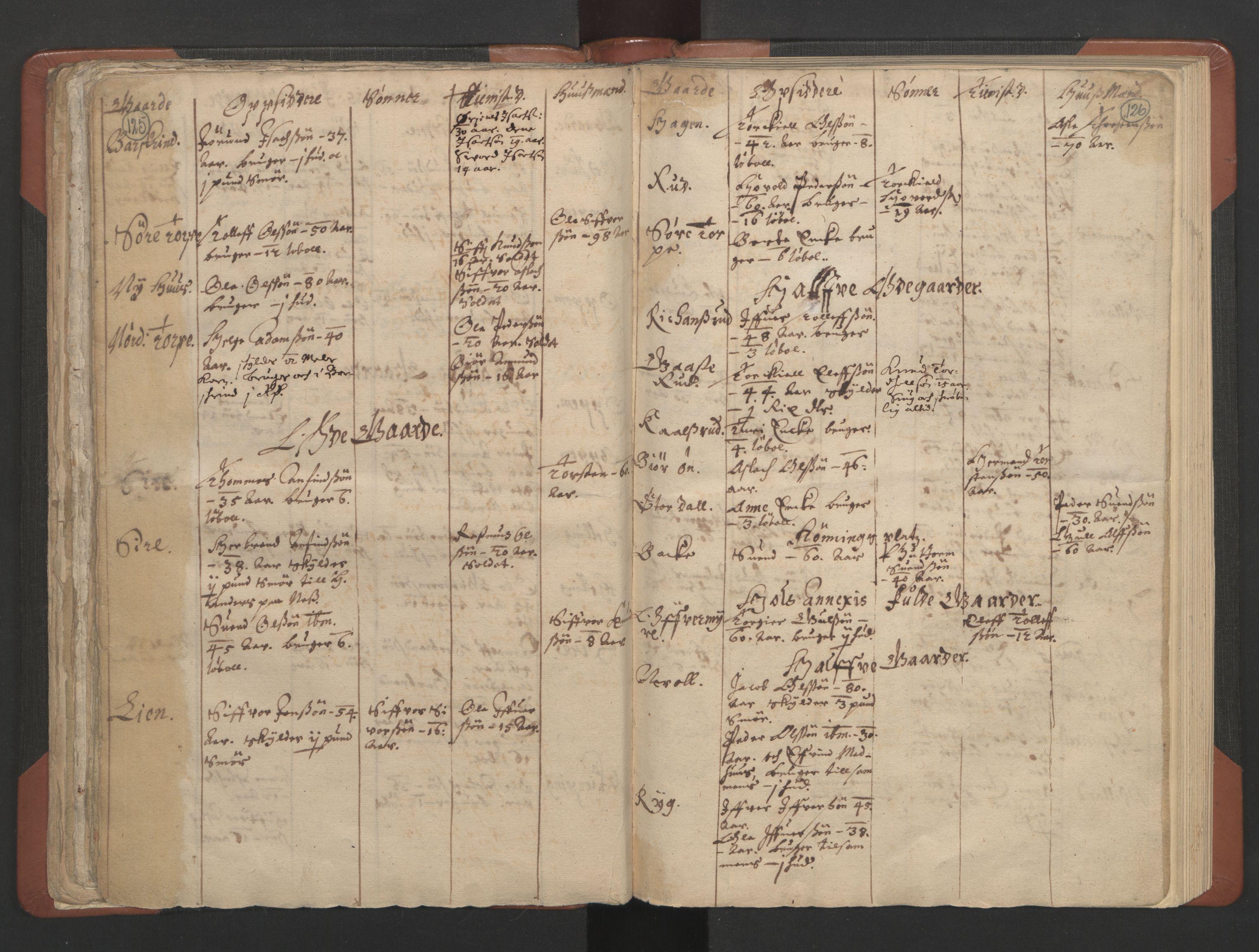 RA, Sogneprestenes manntall 1664-1666, nr. 8: Valdres prosti, 1664-1666, s. 125-126