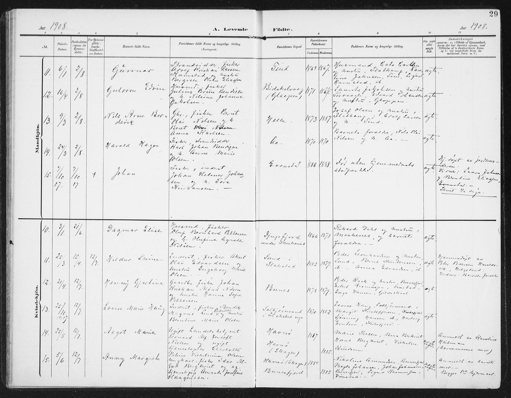 SAT, Ministerialprotokoller, klokkerbøker og fødselsregistre - Nordland, 886/L1221: Ministerialbok nr. 886A03, 1903-1913, s. 29