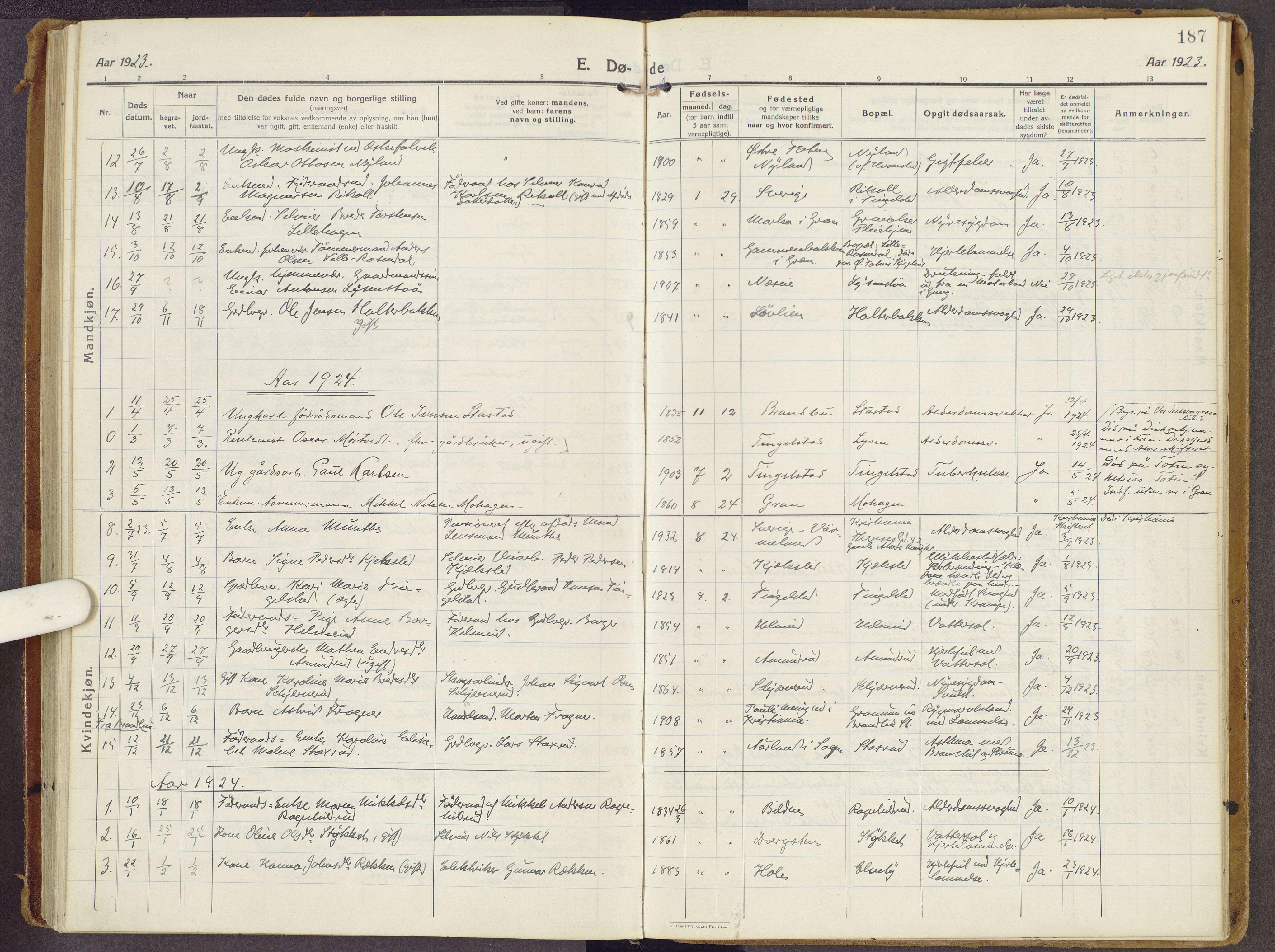 SAH, Brandbu prestekontor, Ministerialbok nr. 3, 1914-1928, s. 187
