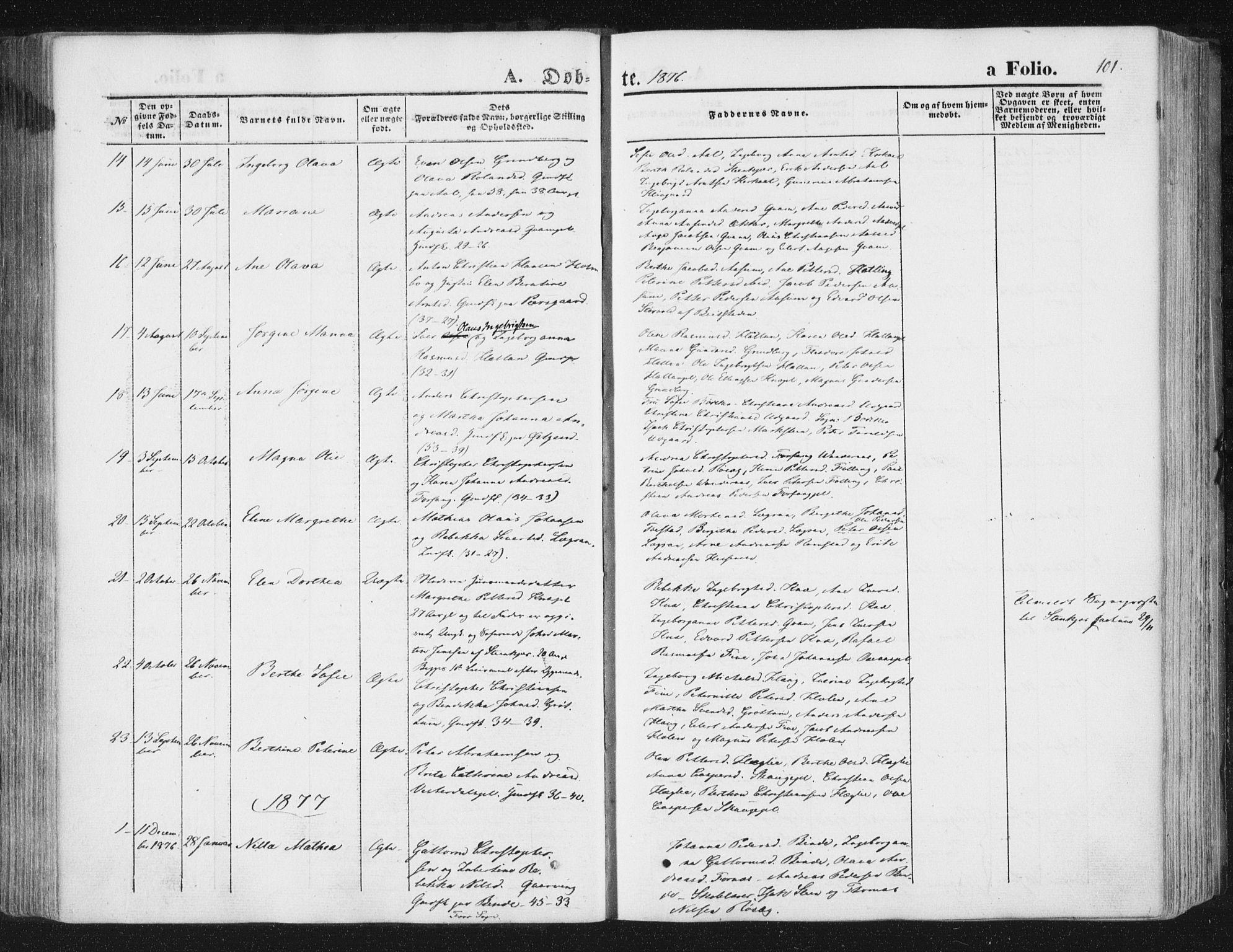 SAT, Ministerialprotokoller, klokkerbøker og fødselsregistre - Nord-Trøndelag, 746/L0447: Ministerialbok nr. 746A06, 1860-1877, s. 101
